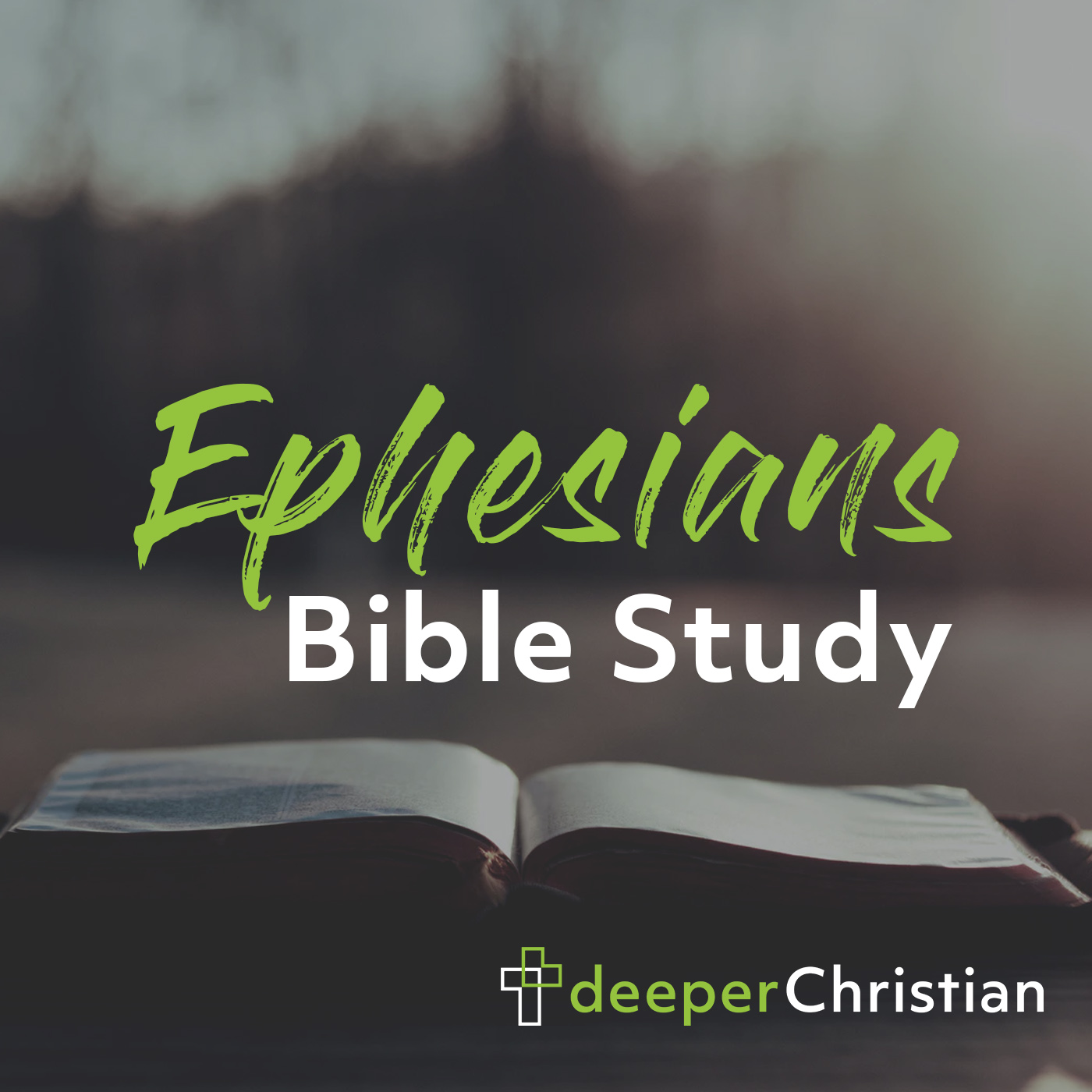 Artwork for podcast Deeper Christian Bible Study in Ephesians