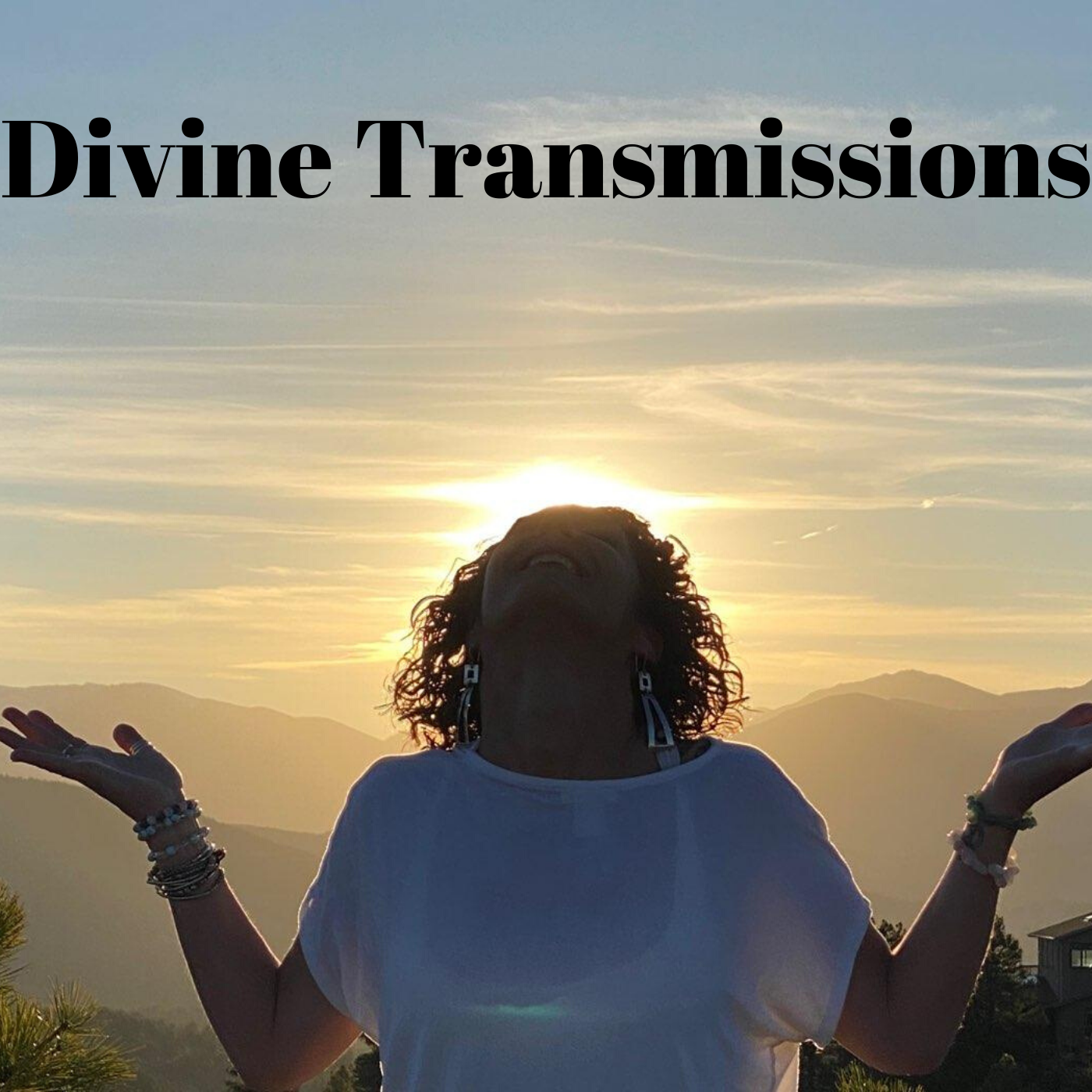Show artwork for Divine Transmissions