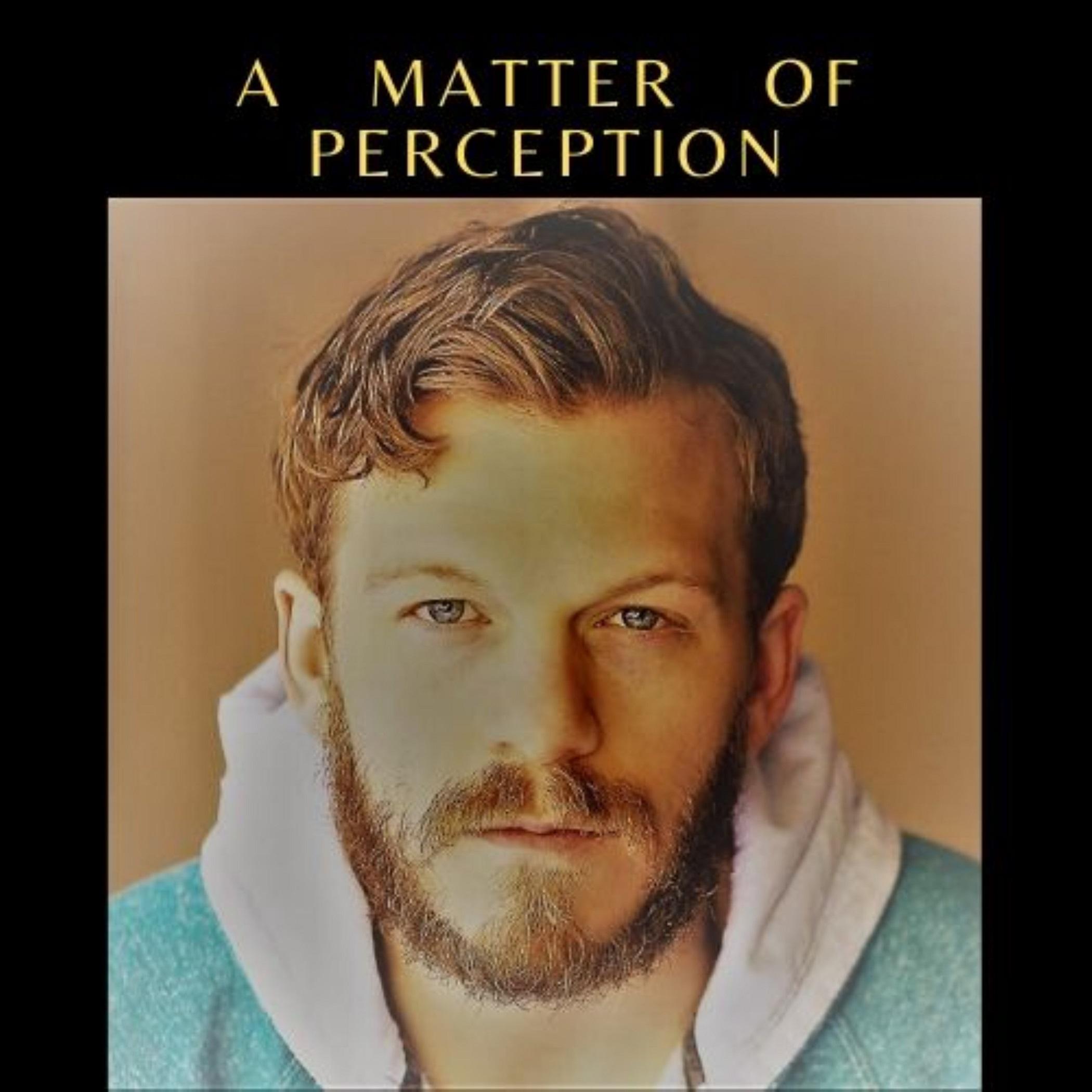 Artwork for podcast A Matter of Perception