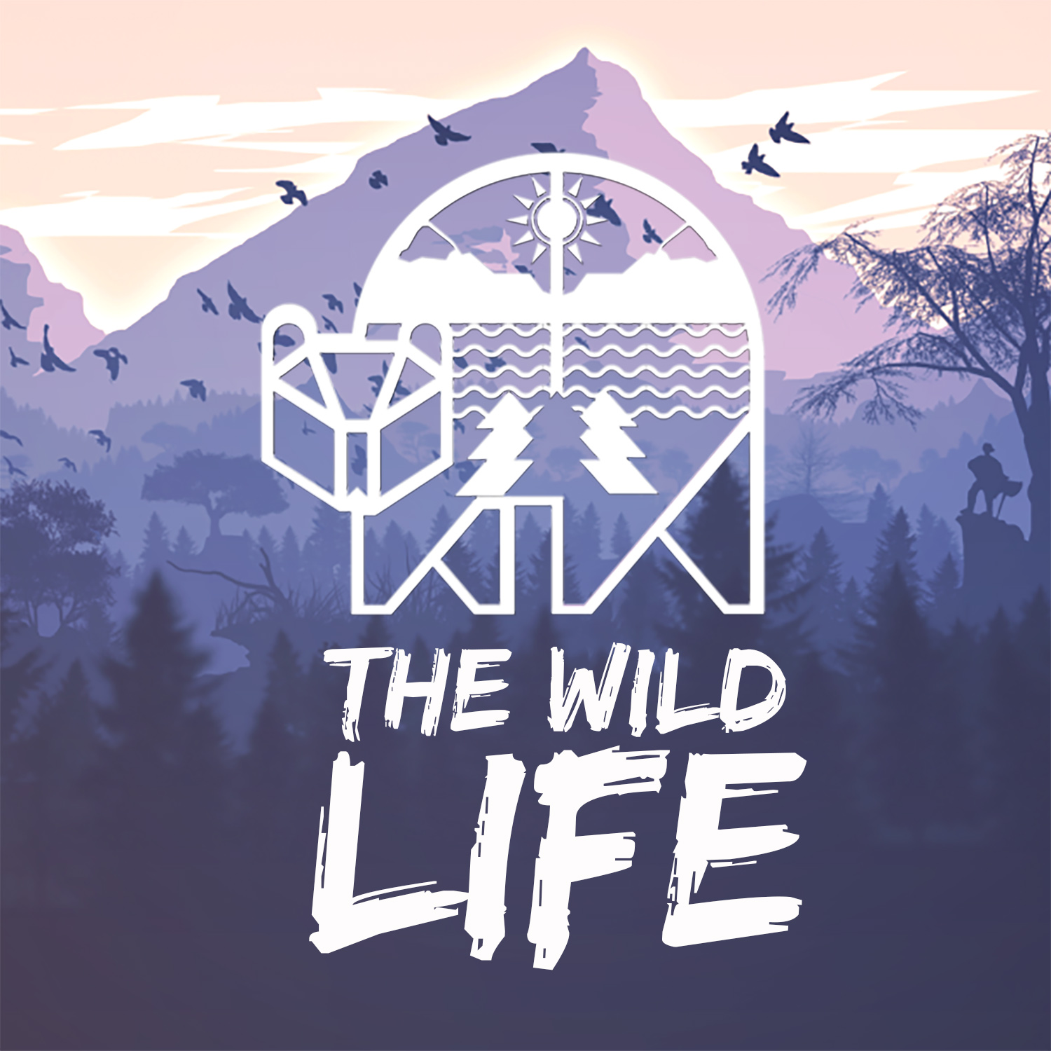 Show artwork for The Wild Life