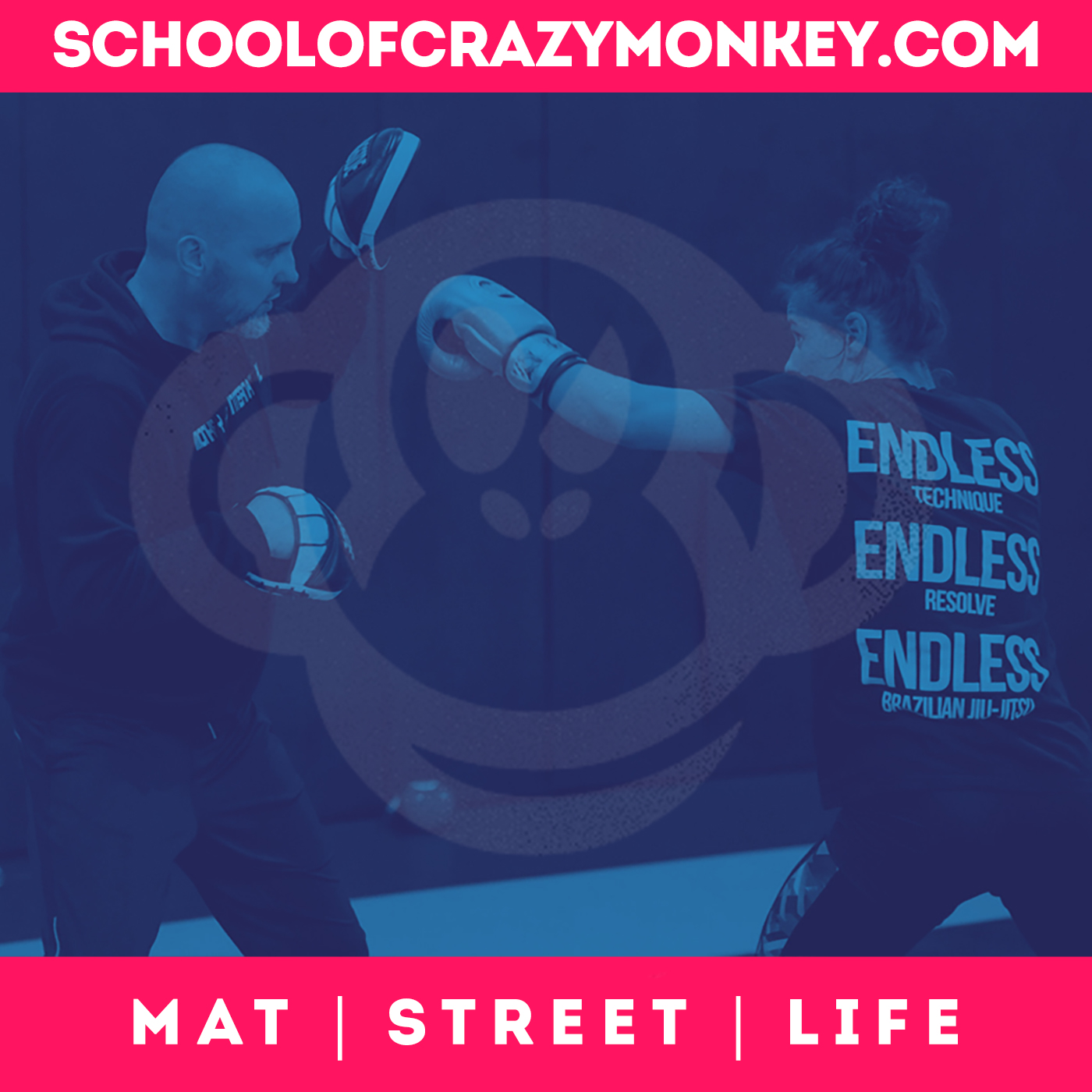 Show artwork for School of Crazy Monkey