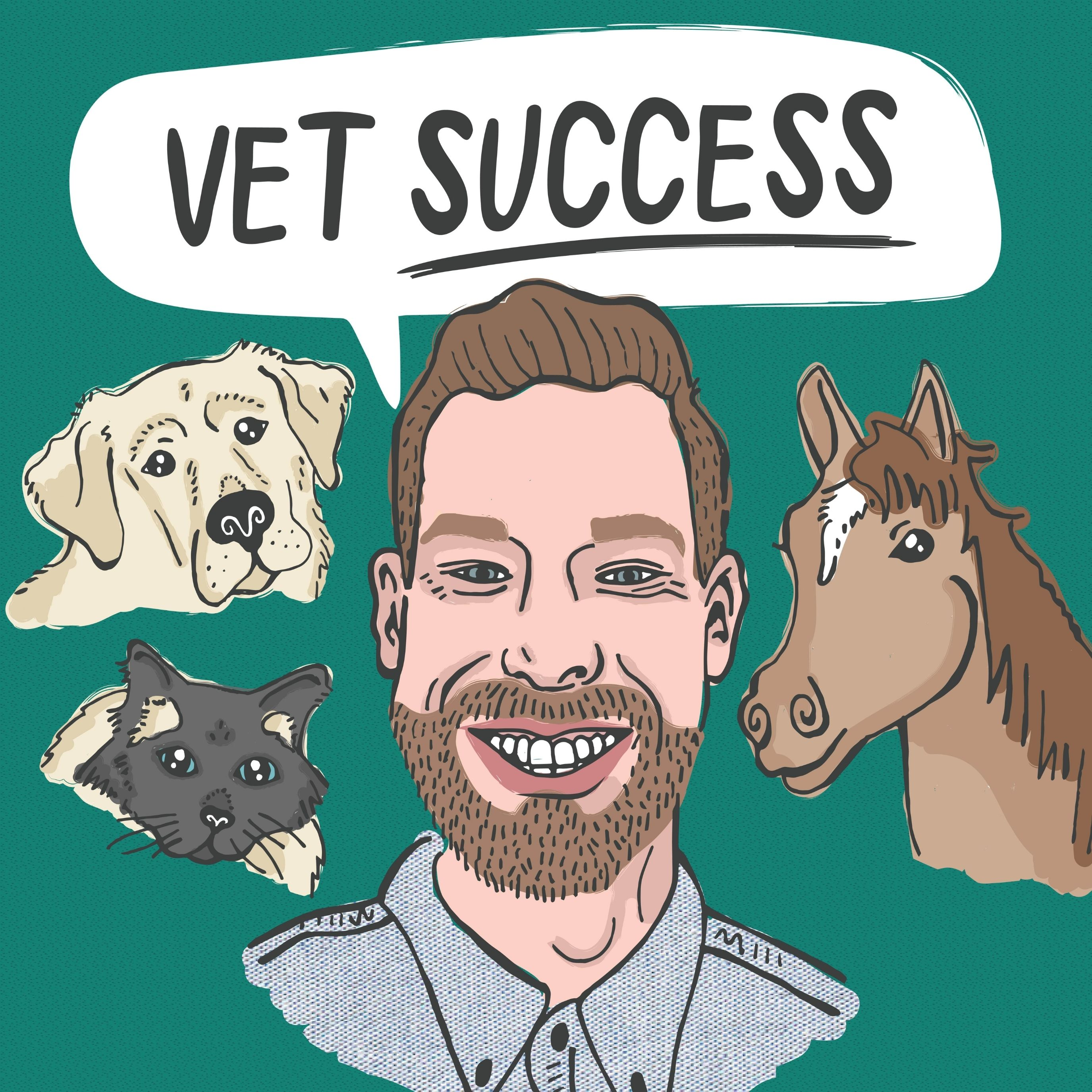 Show artwork for The Veterinarian Success Podcast