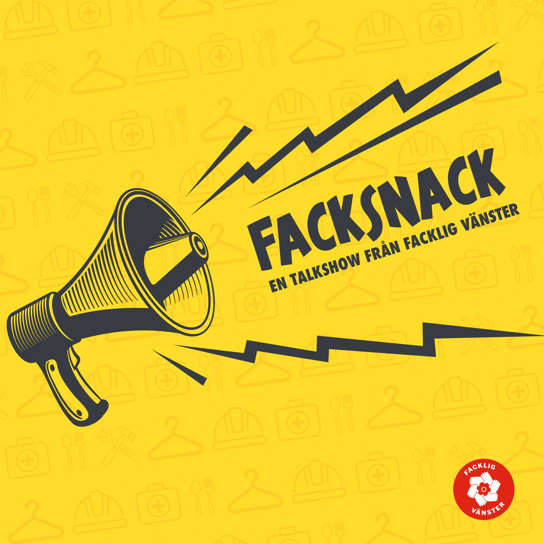 Show artwork for Facksnack