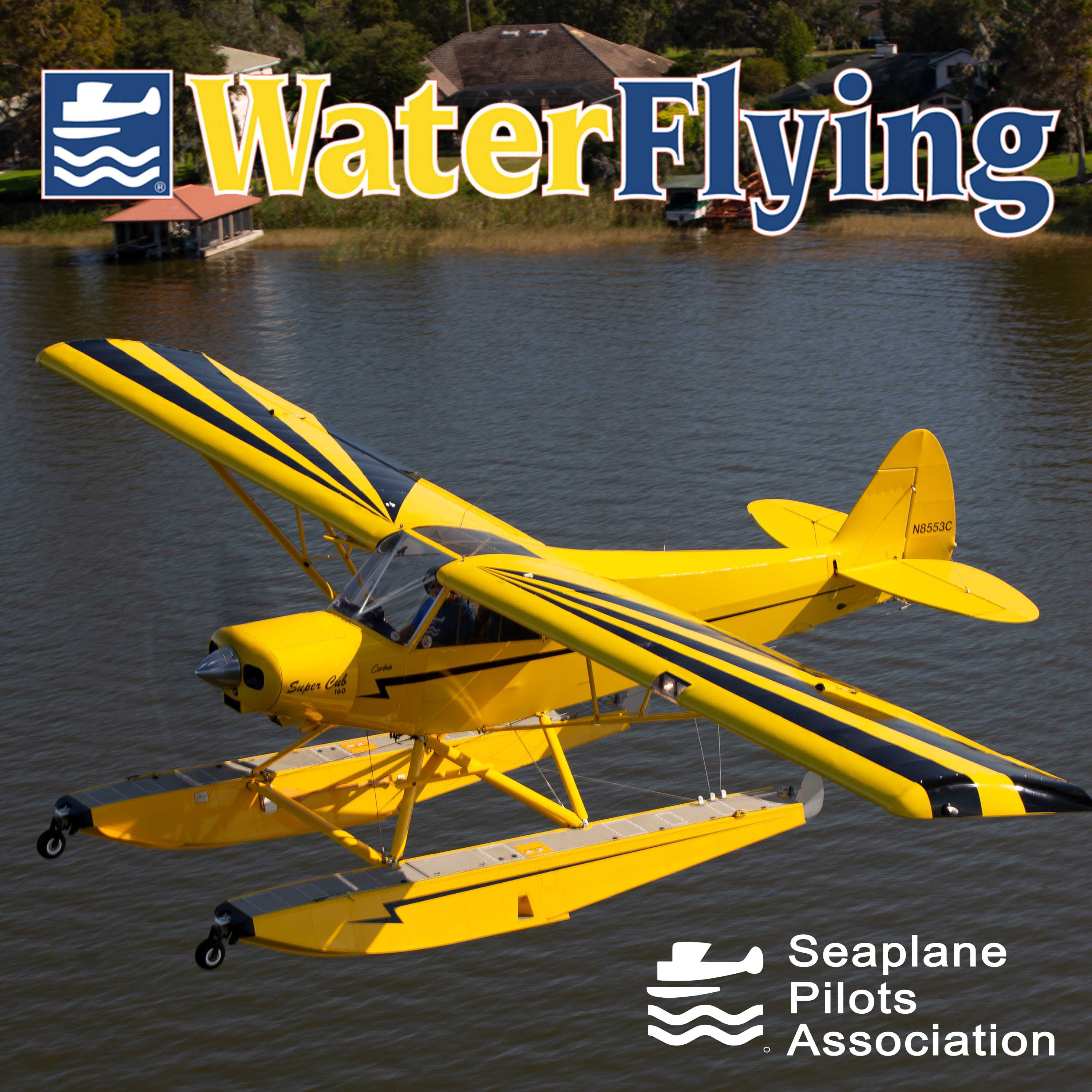 Show artwork for Water Flying