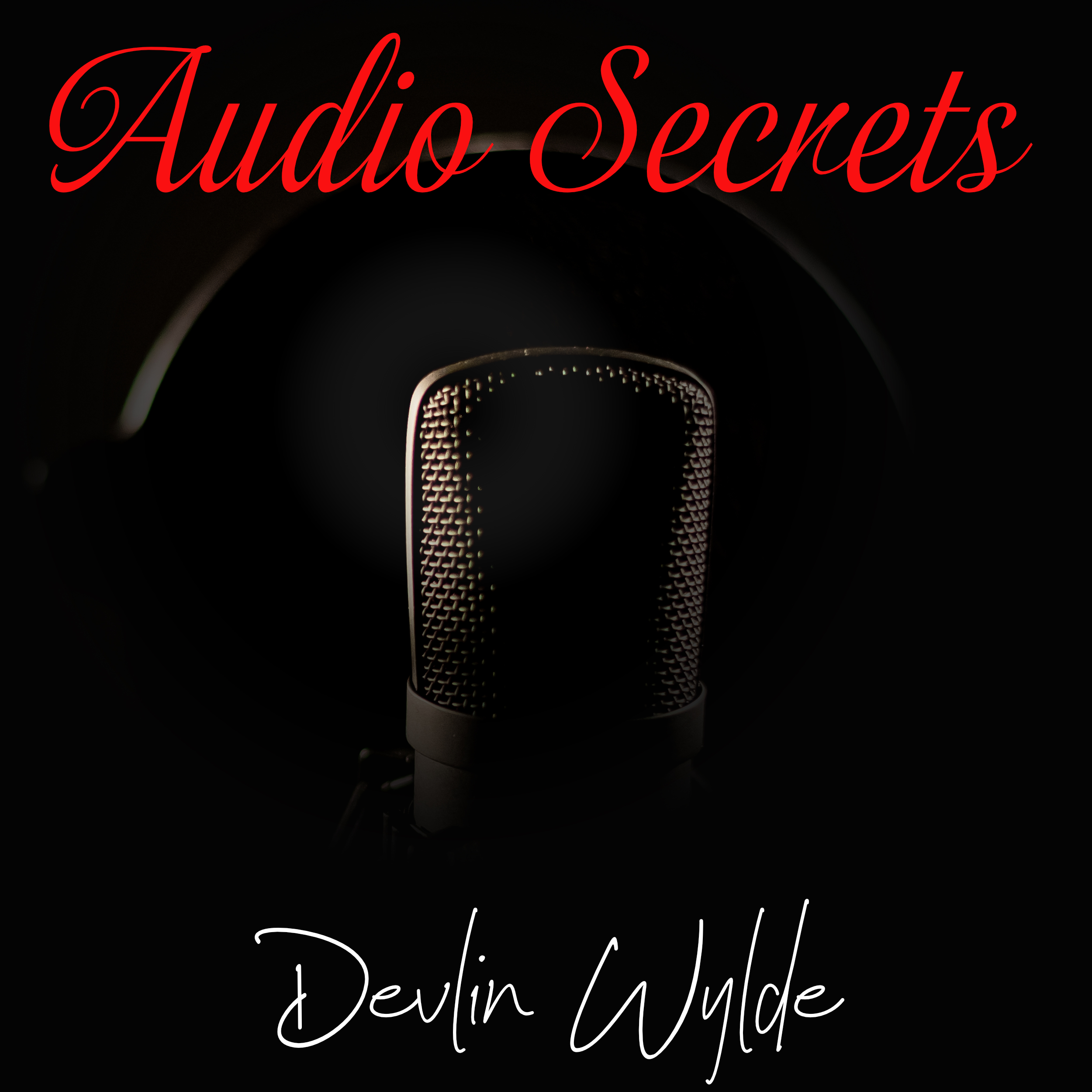 The authors journey from written to audiobook