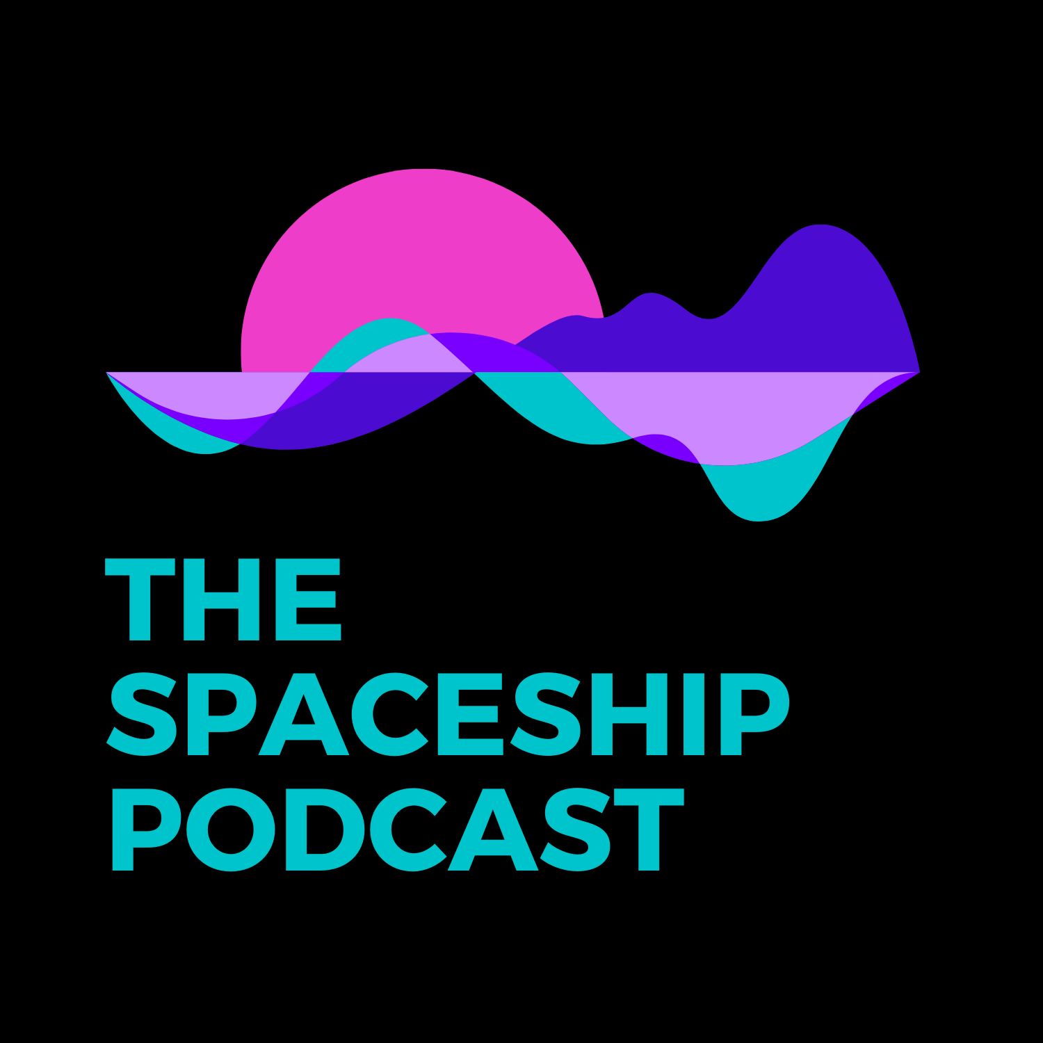 Artwork for podcast The Spaceship Podcast