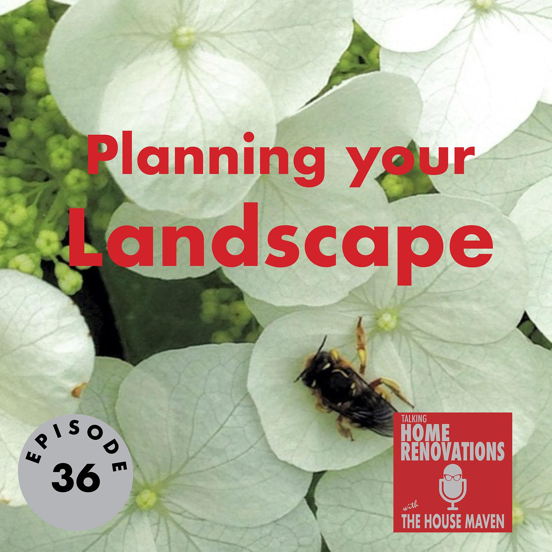 Planning your Landscape