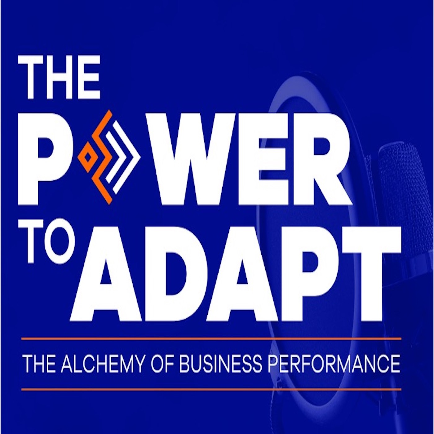 Artwork for podcast The Power To Adapt Podcast