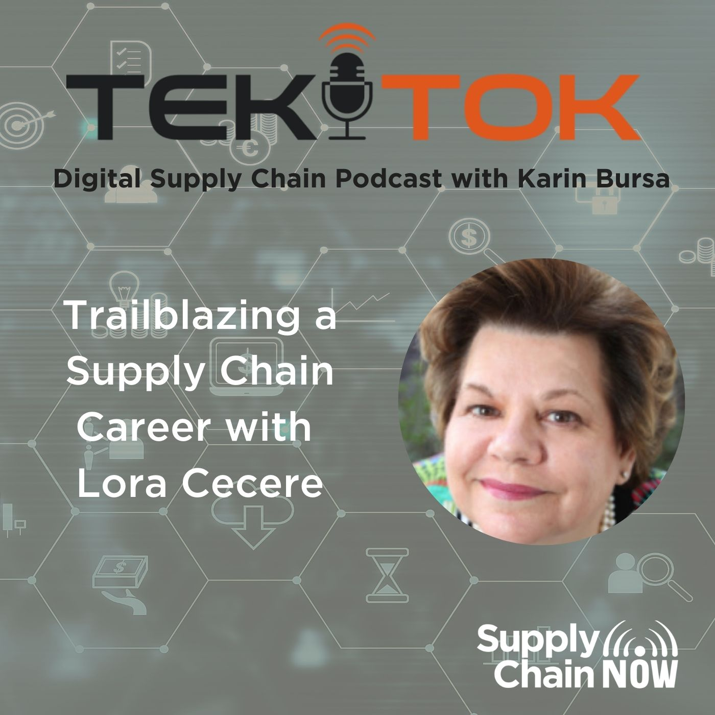 Trailblazing a Supply Chain Career with Lora Cecere