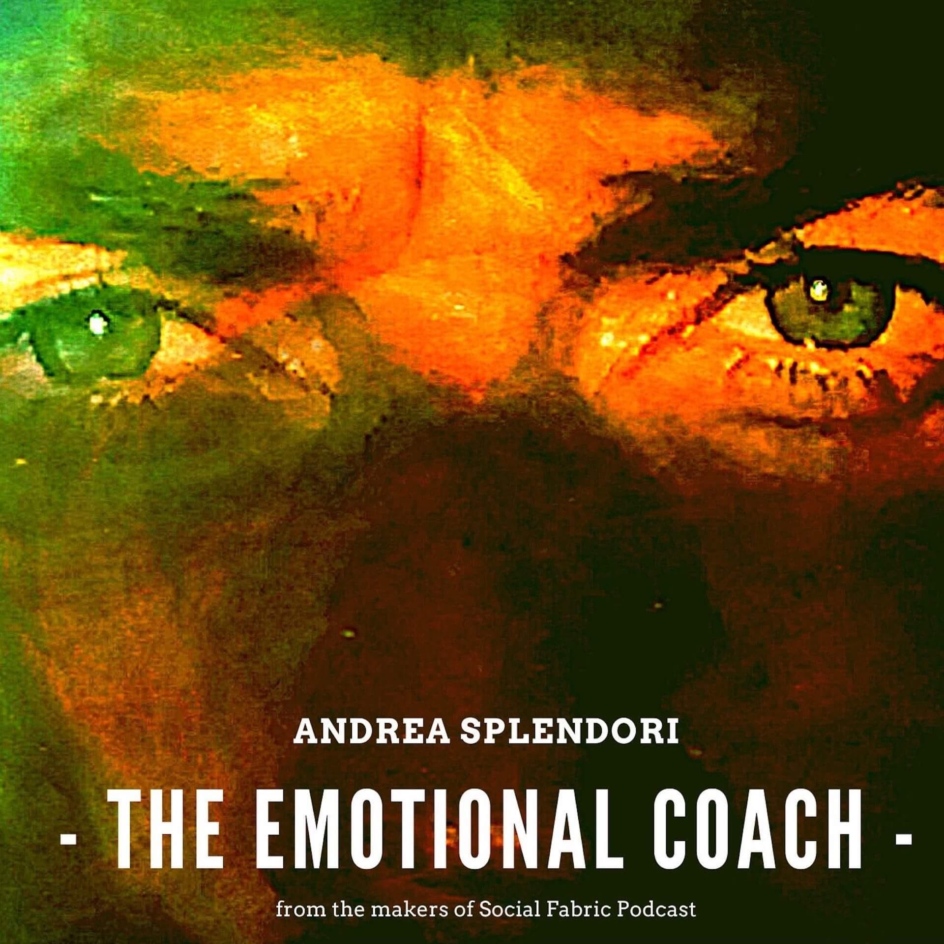 Artwork for podcast The Emotional Coach