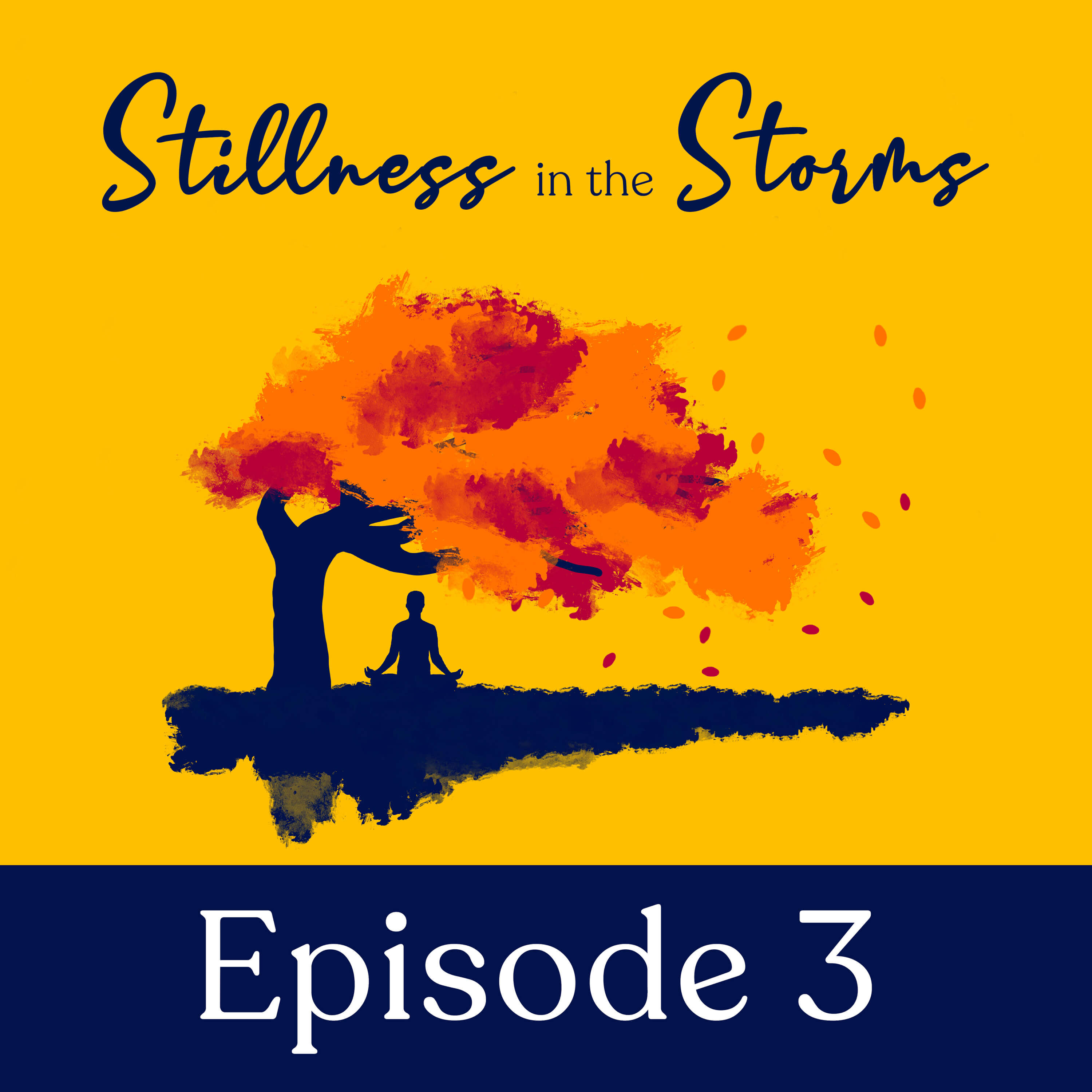Artwork for podcast Stillness in the Storms