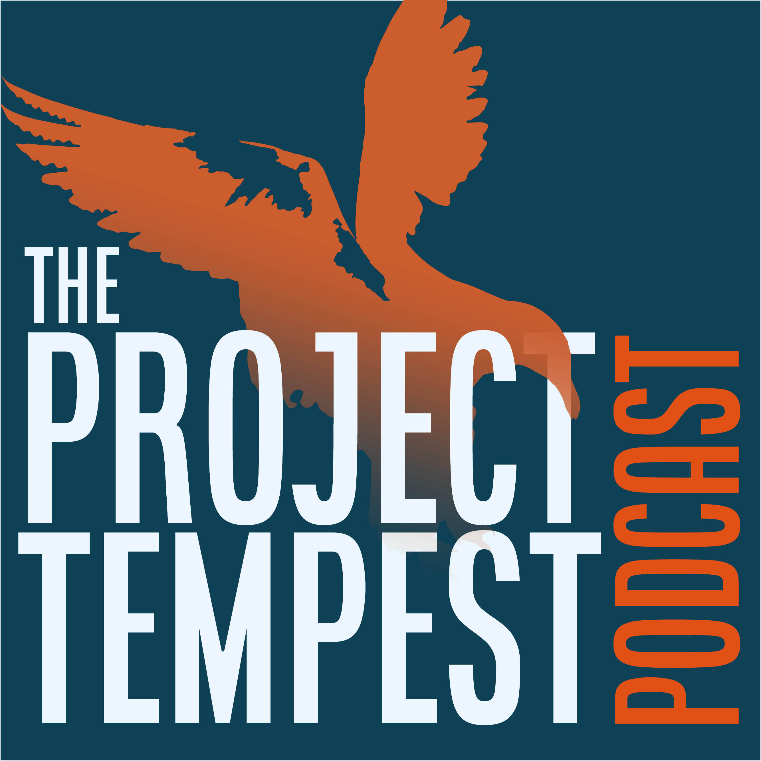 Artwork for podcast Project Tempest