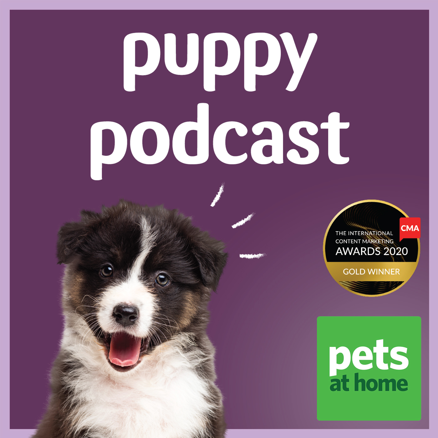 Artwork for podcast Pets at Home Puppy Podcast