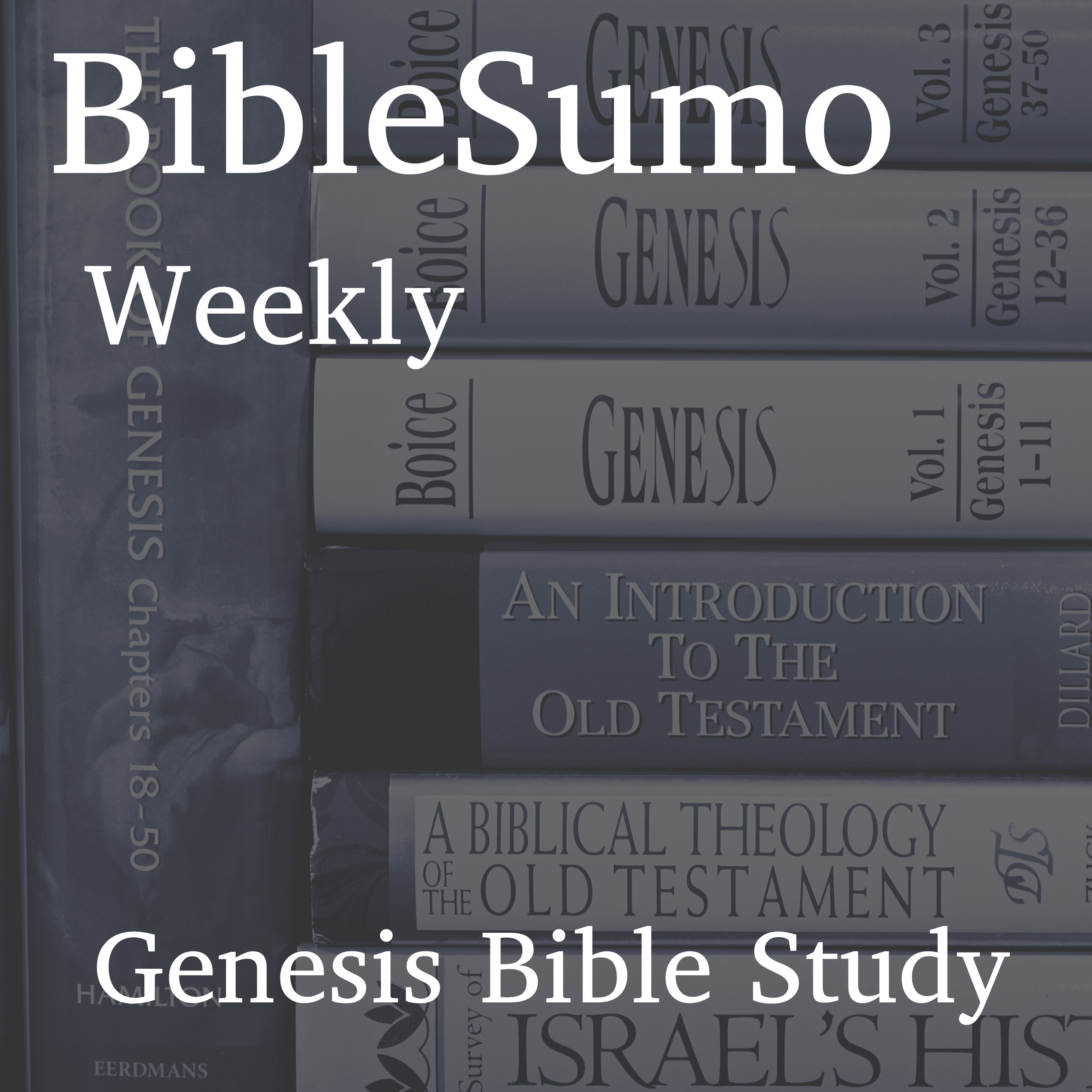 Artwork for podcast BibleSumo Weekly Bible Study