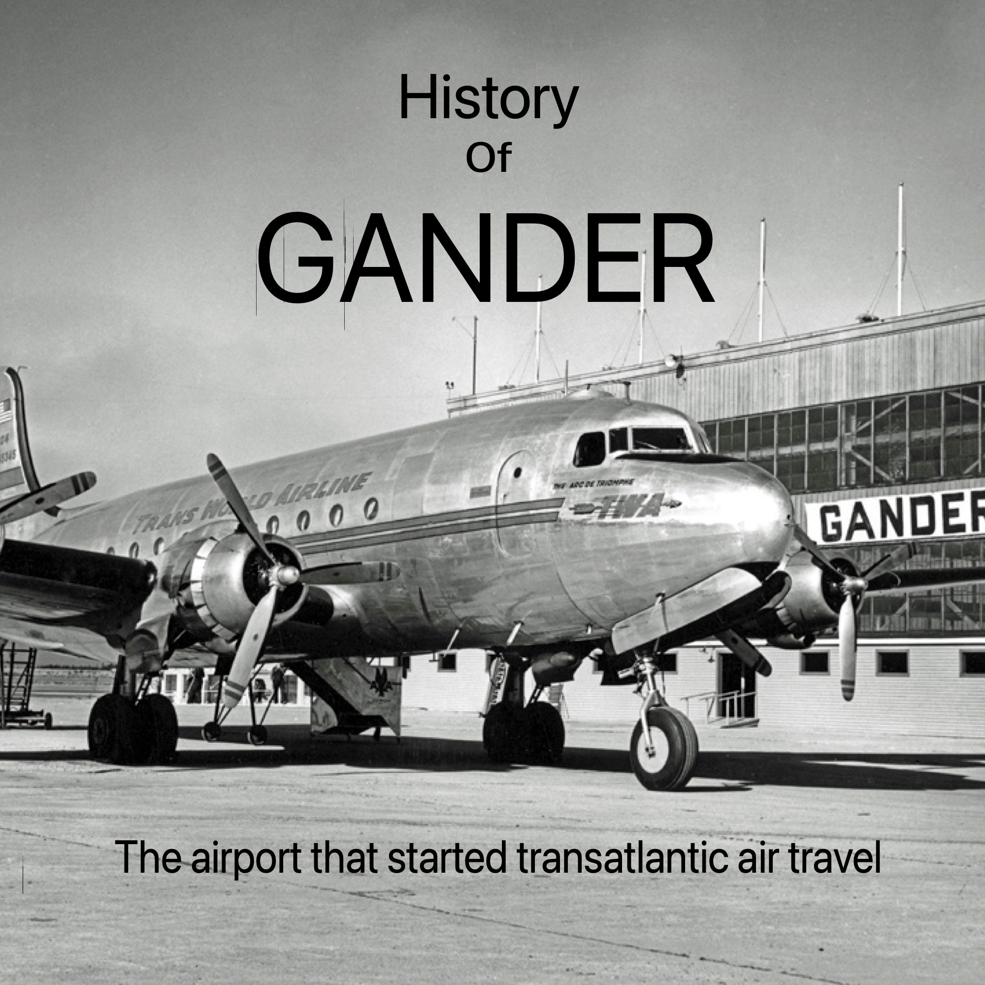 Show artwork for History of Gander