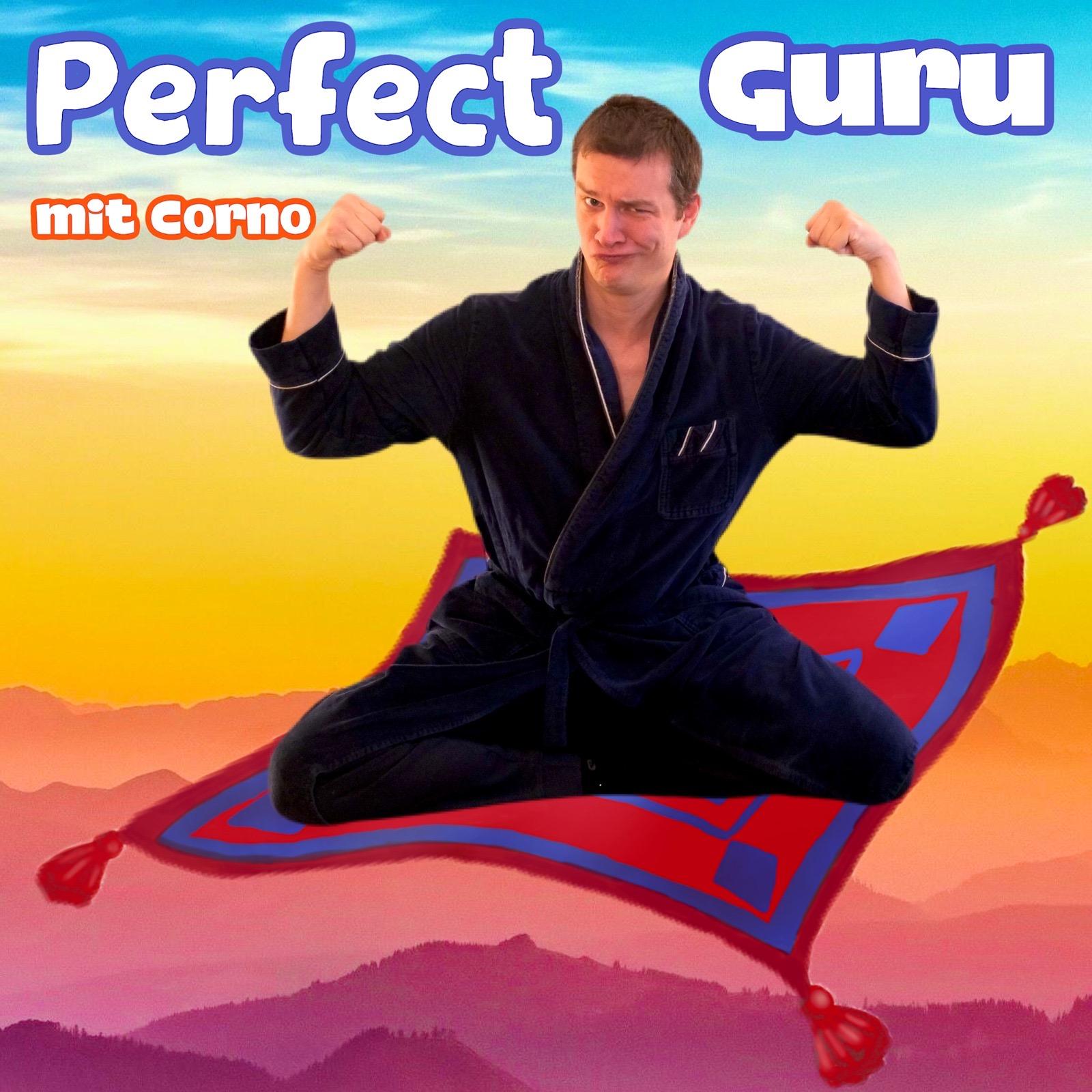 Show artwork for Perfect Guru