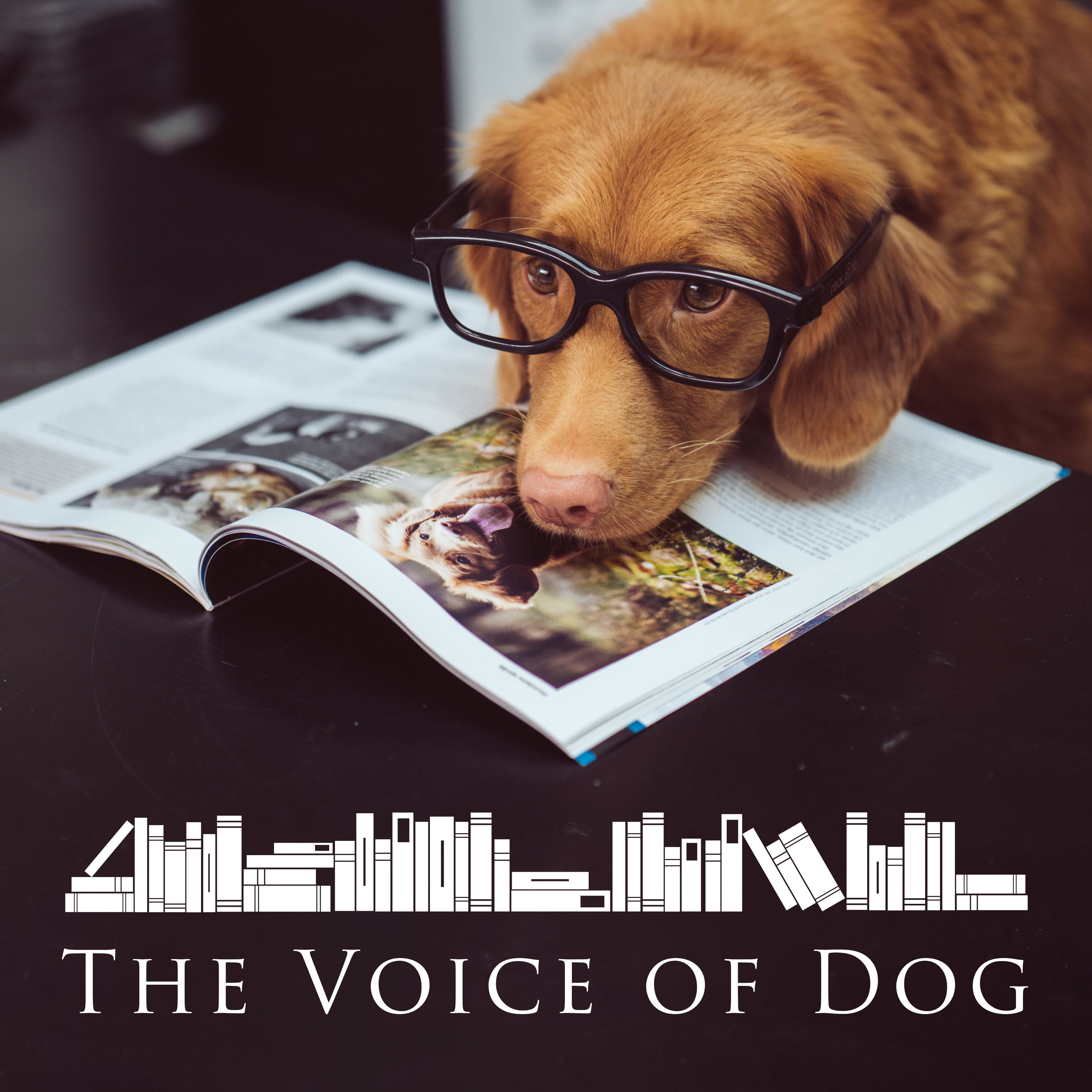 Show artwork for The Voice of Dog