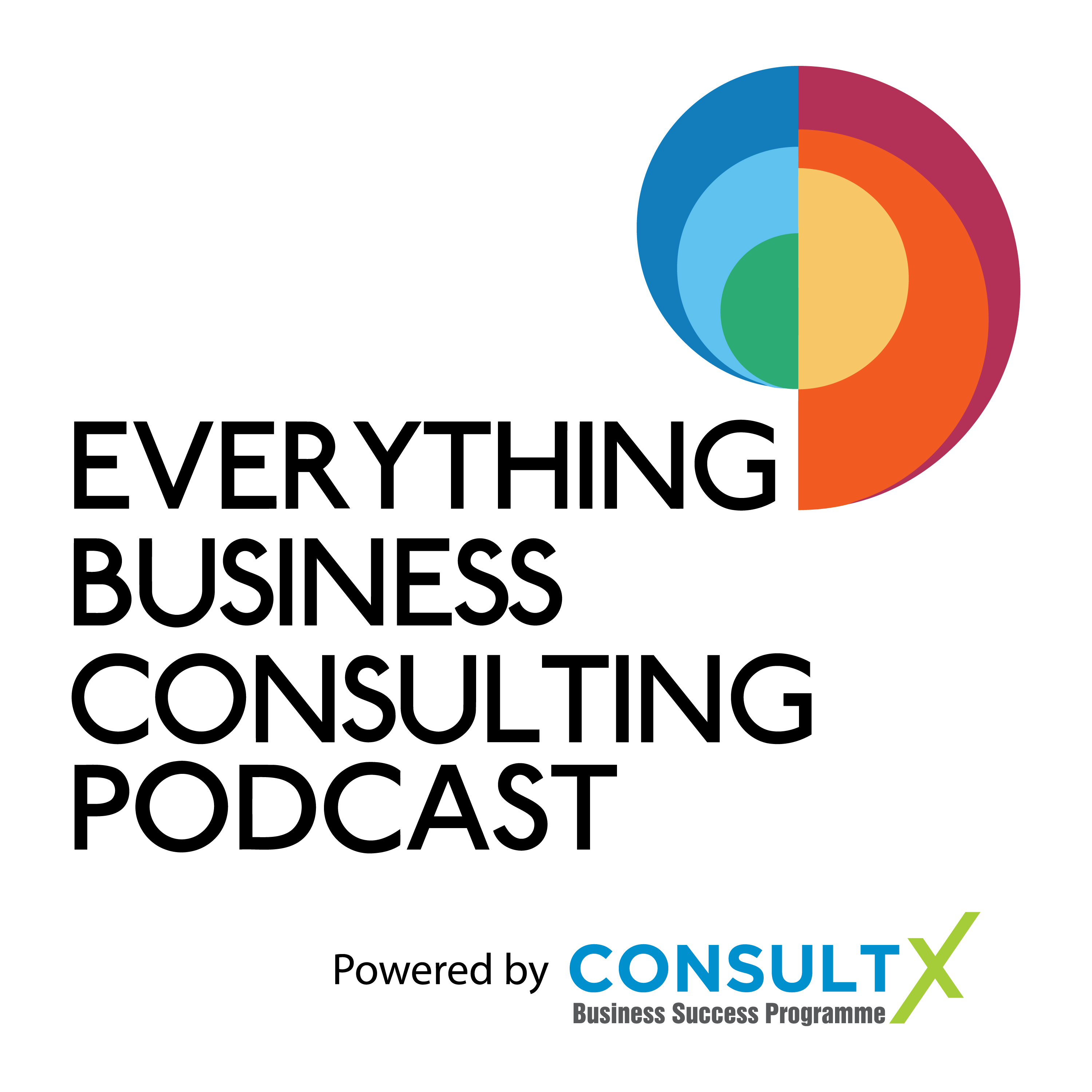 47. Why Listening To Winston Churchill Could Help You To Become A Better Consultant