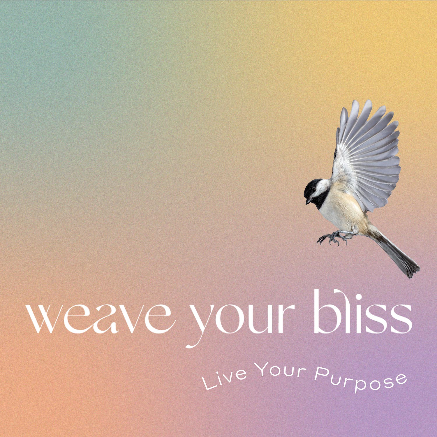 Weave Your Bliss
