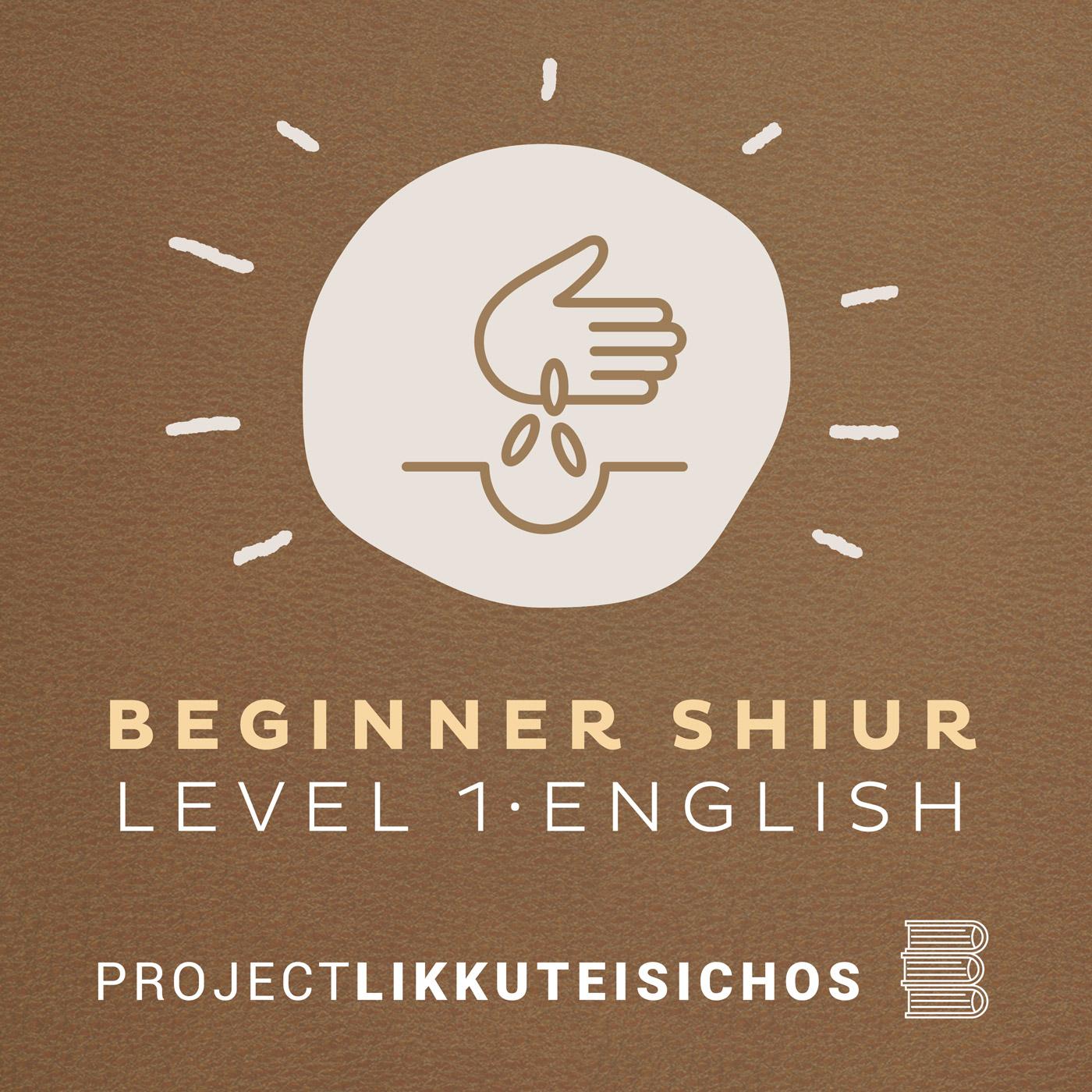Artwork for podcast Beginner Shiur Level 1