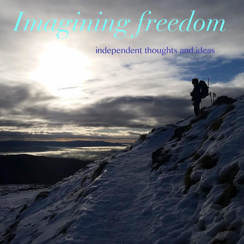 Artwork for podcast Imagining Freedom