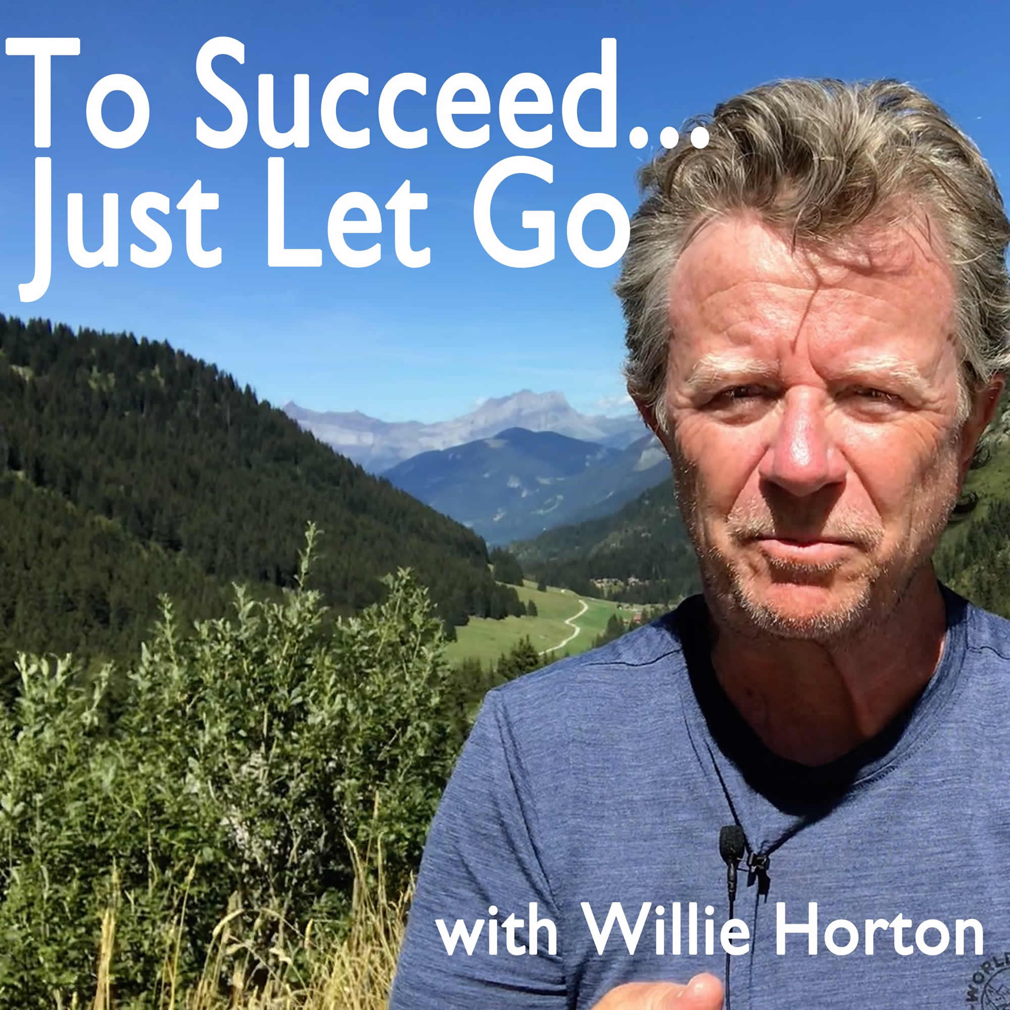 Show artwork for To Succeed... Just Let Go