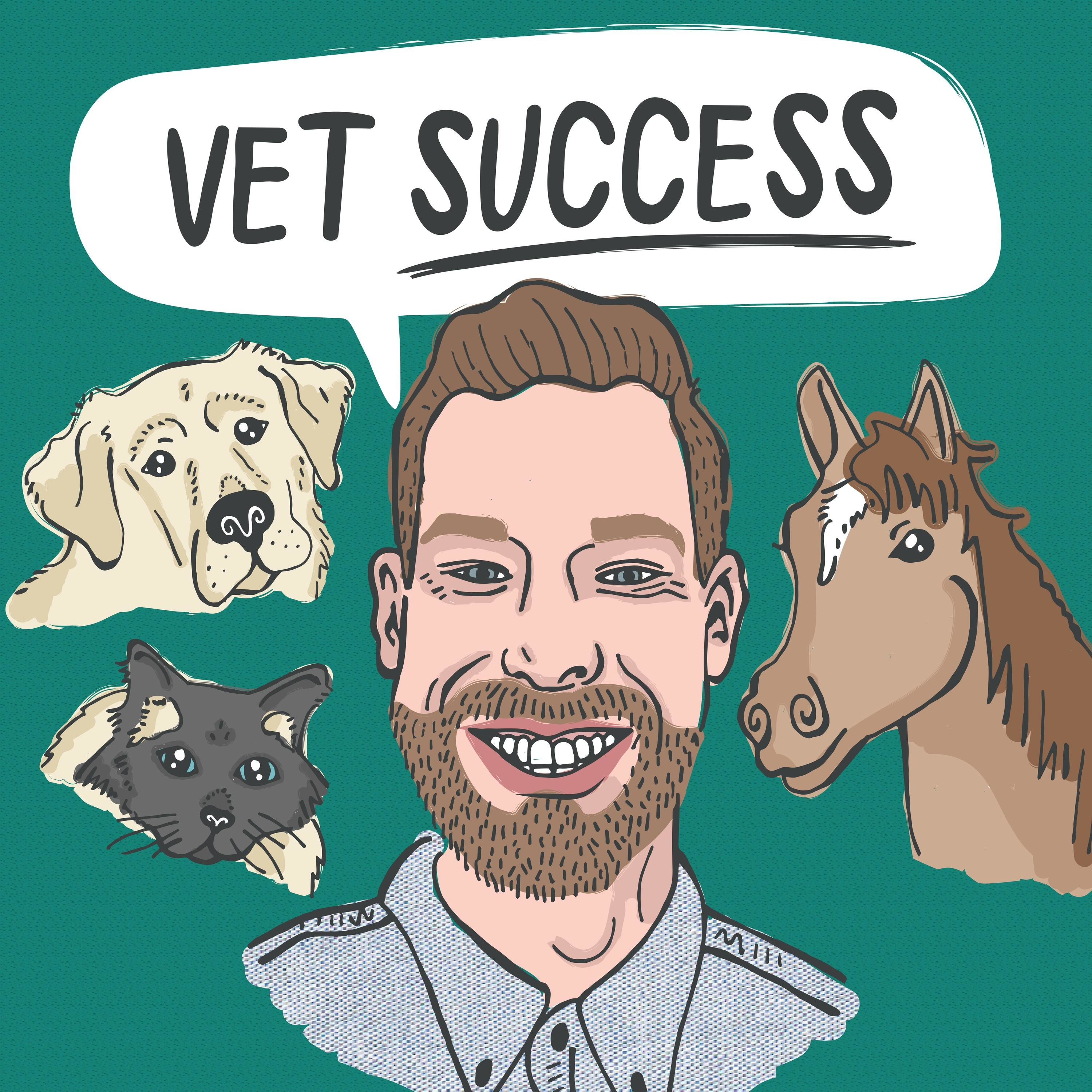 Artwork for podcast The Veterinarian Success Podcast