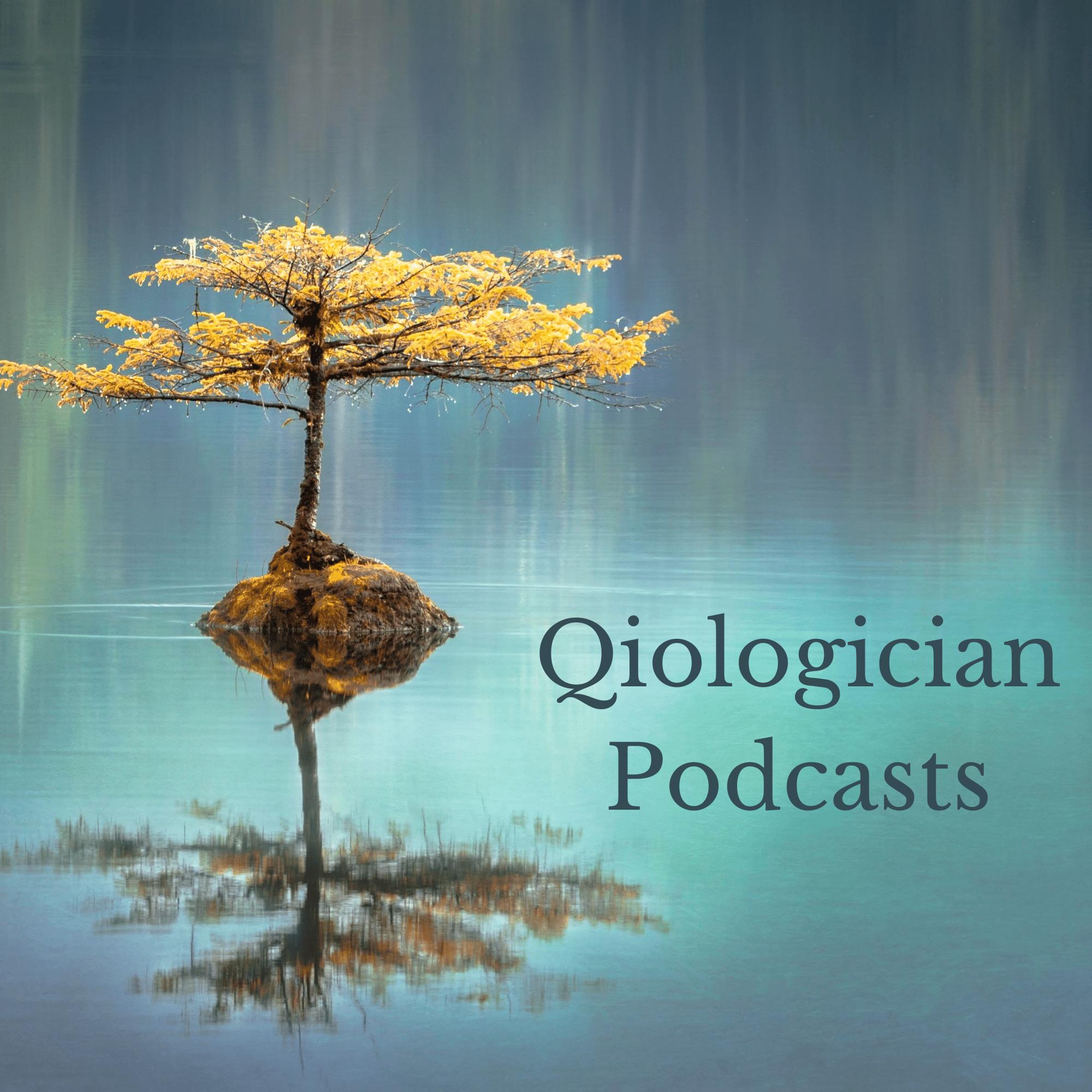 Artwork for podcast Qiological Podcast