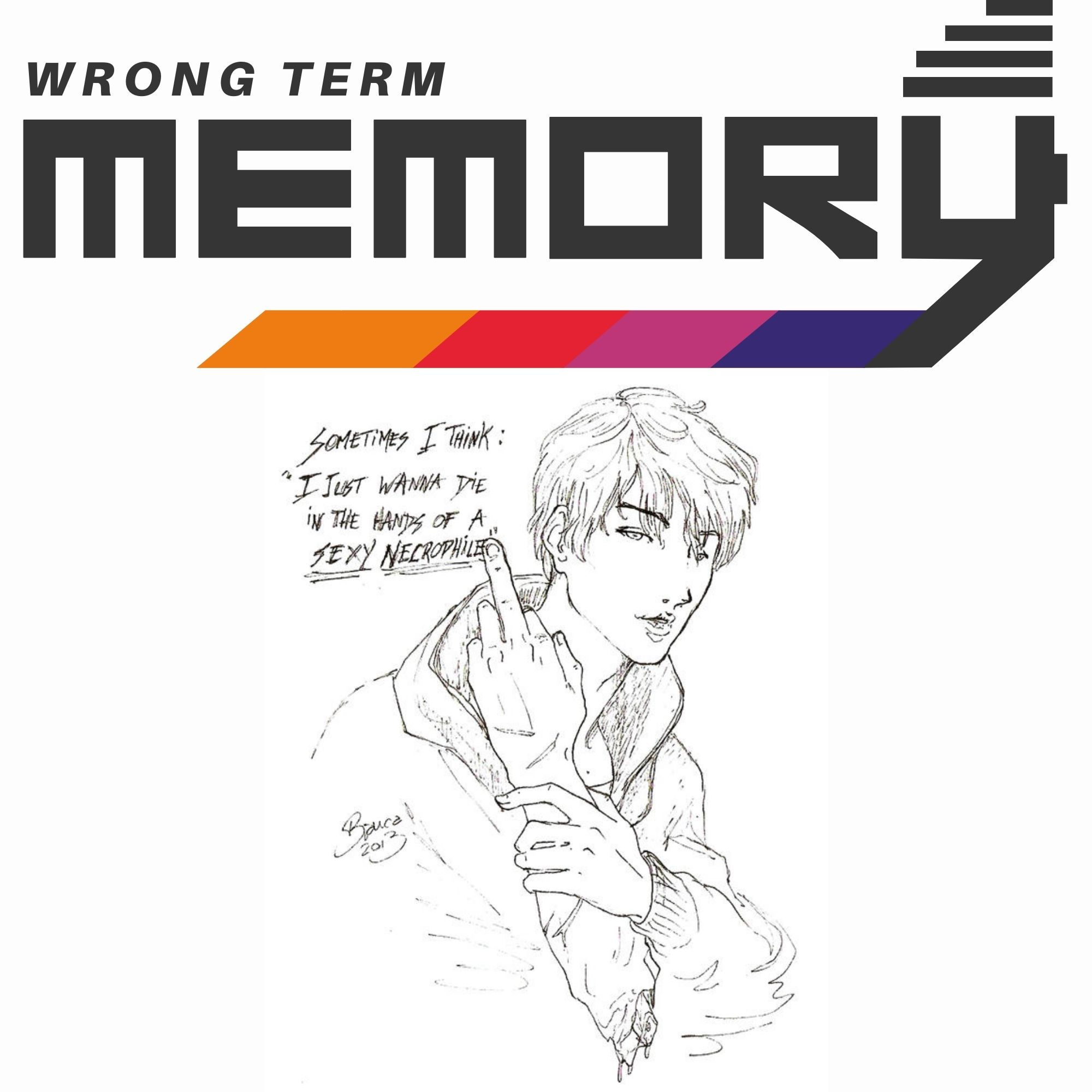 Artwork for podcast Wrong Term Memory