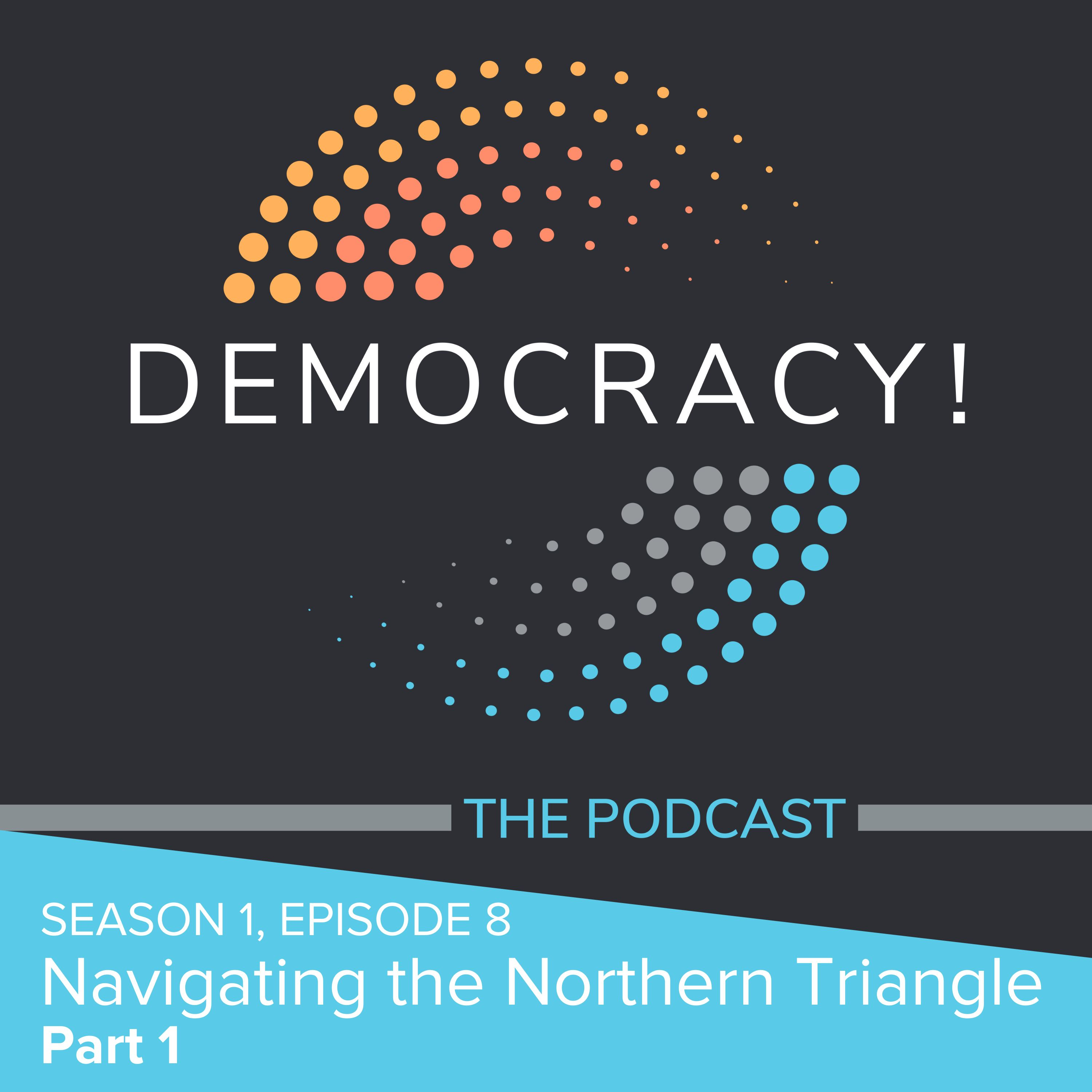 Artwork for podcast Democracy! The Podcast