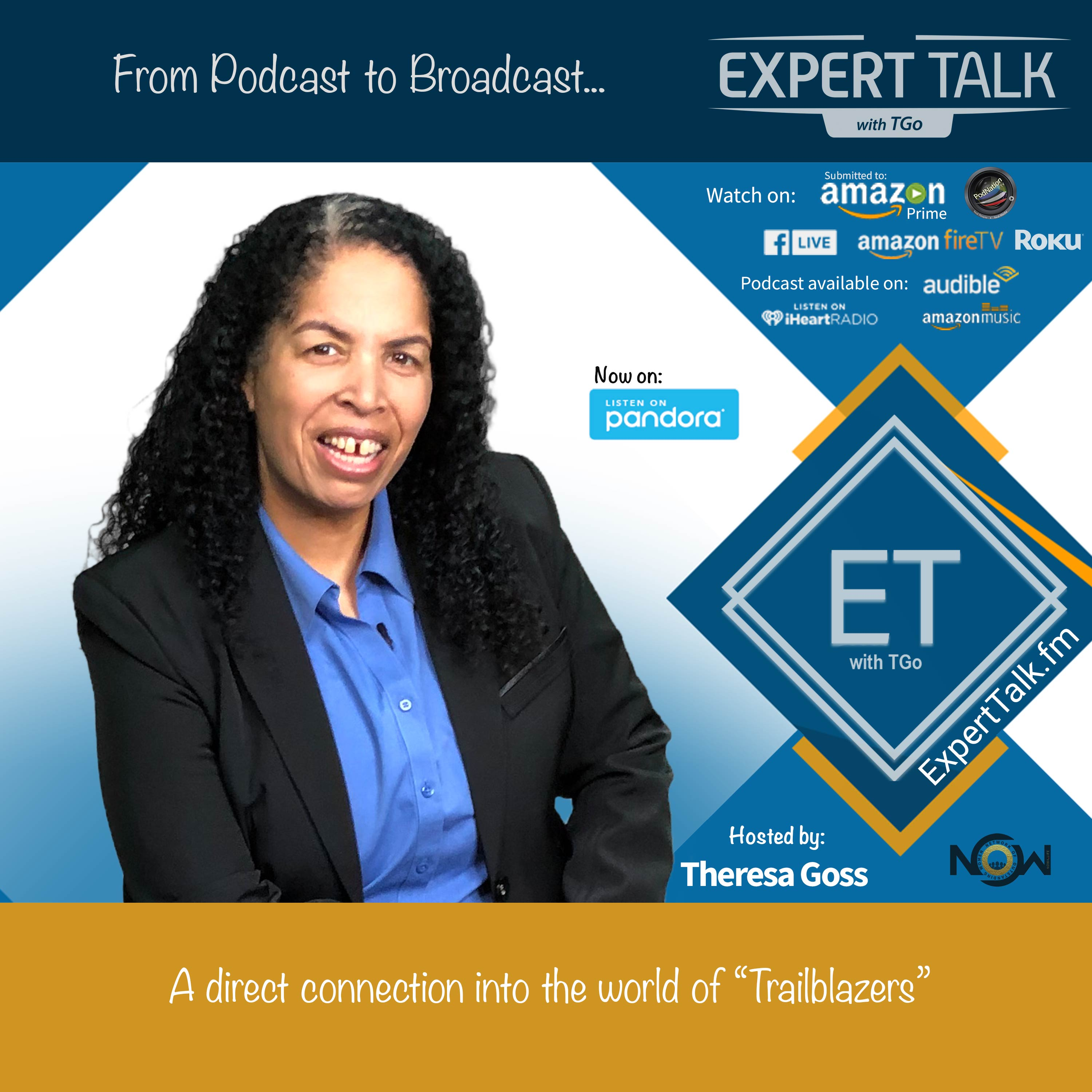 Show artwork for Expert Talk with TGo
