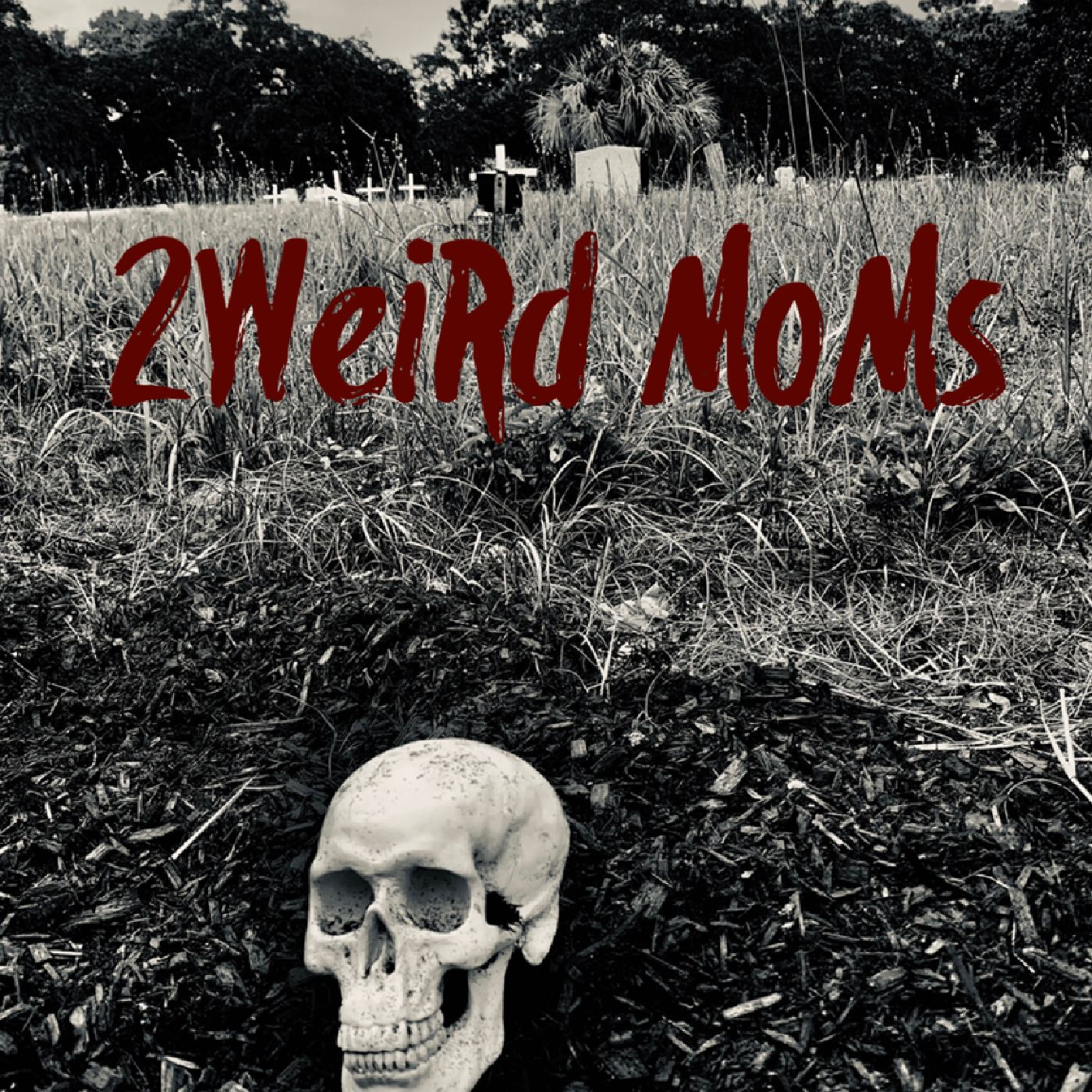 Show artwork for 2WeiRd MoMs