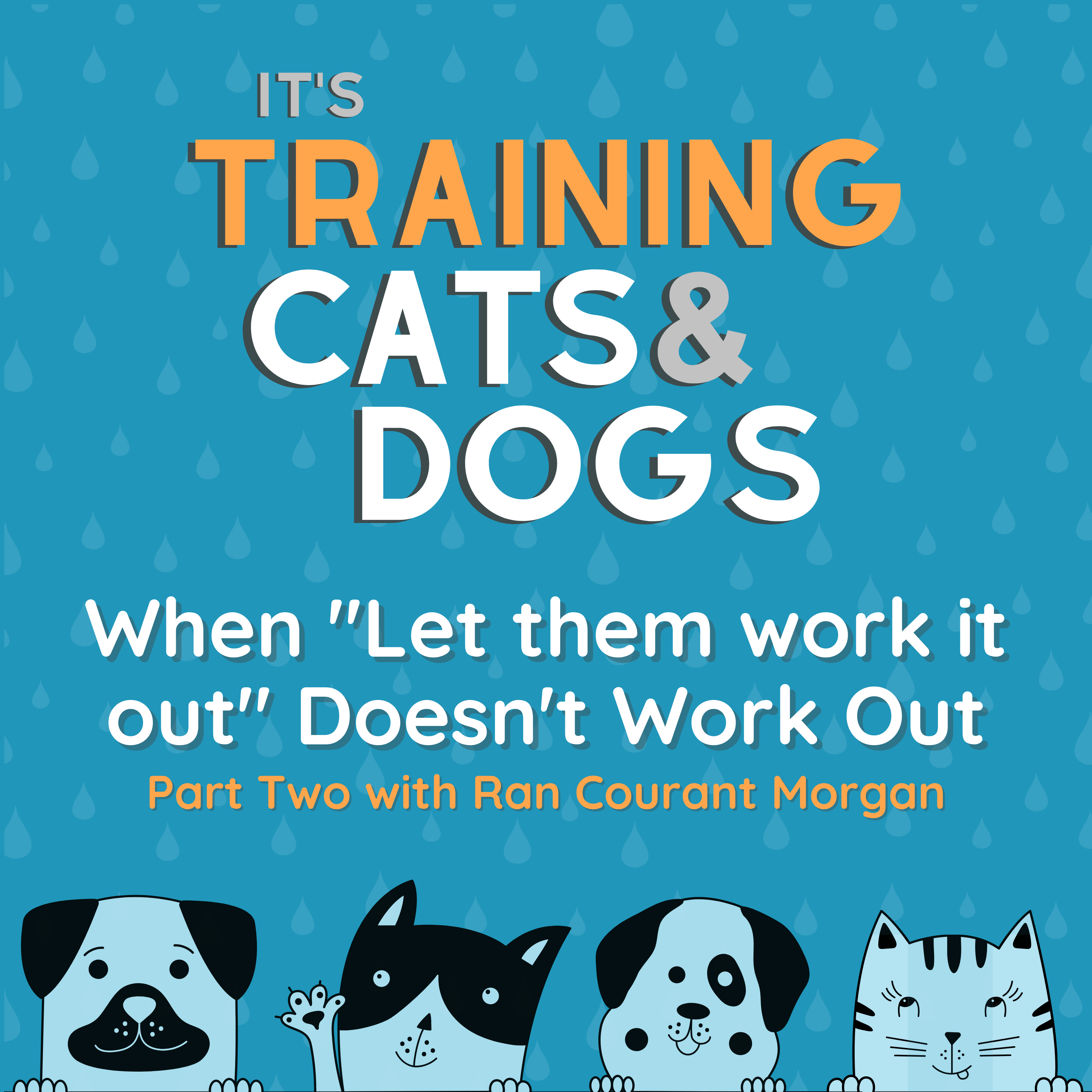 """When """"Let them work it out"""" Doesn't Work Out - Part Two - with Ran Courant Morgan"""