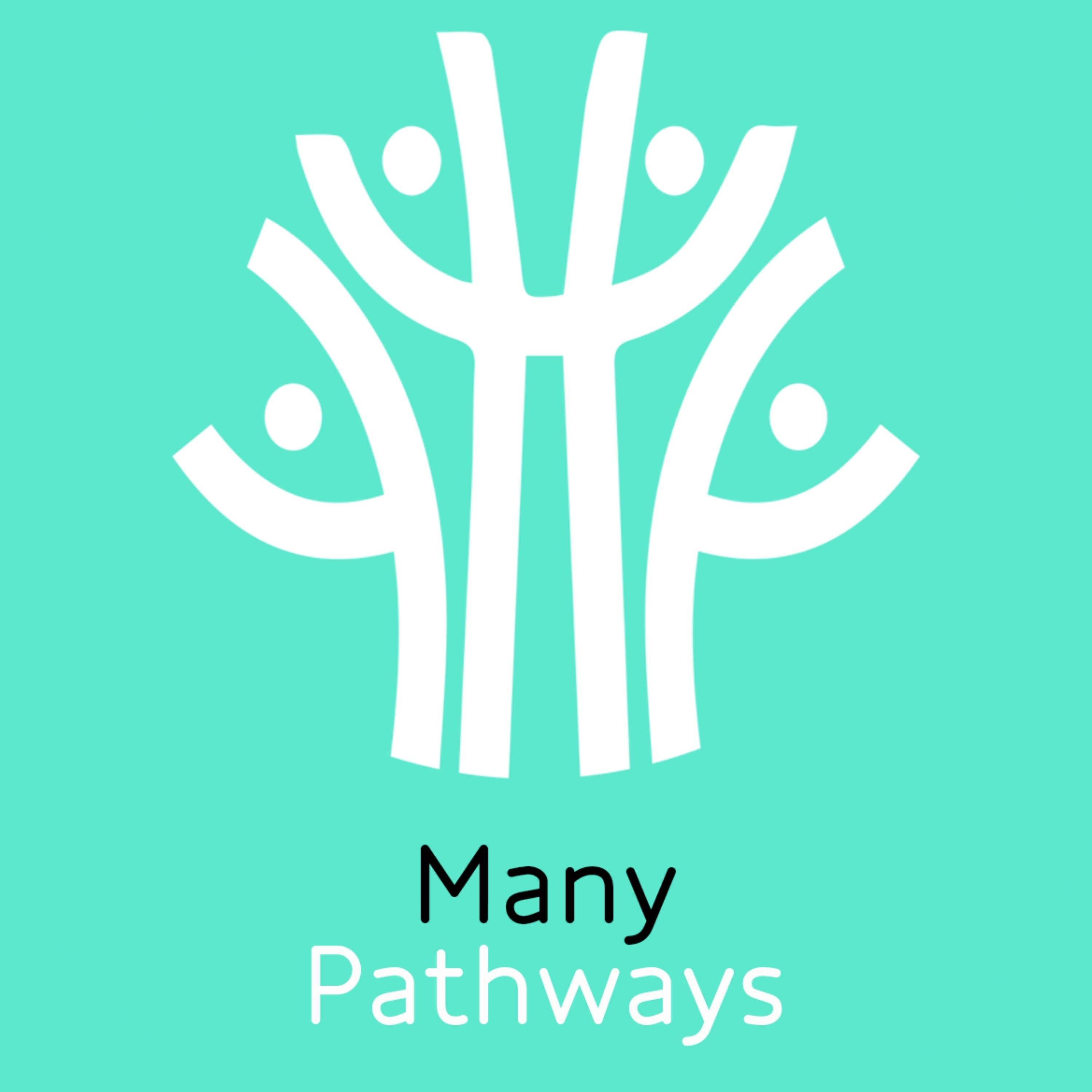 Show artwork for Many Pathways