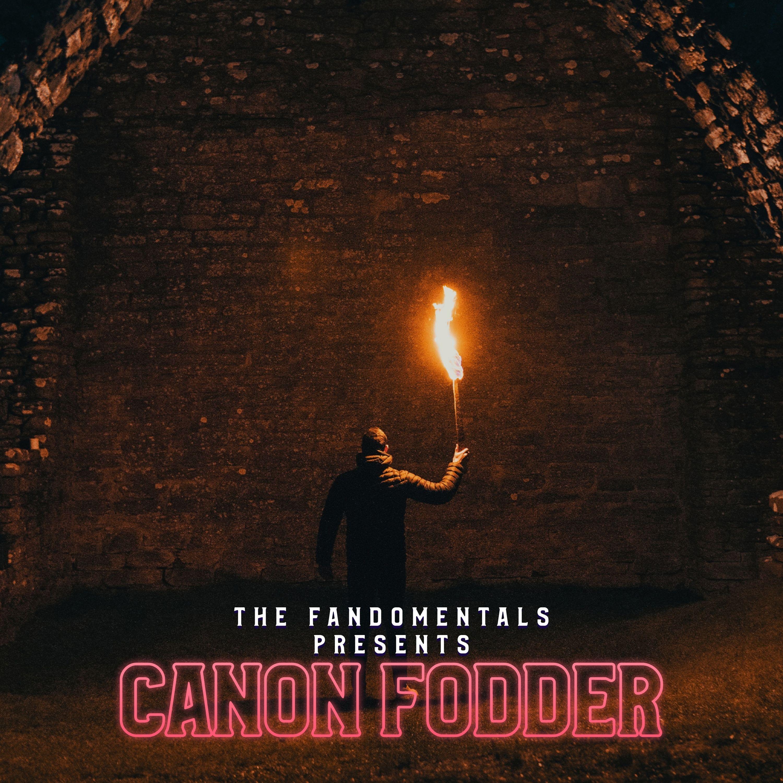 Artwork for podcast Canon Fodder