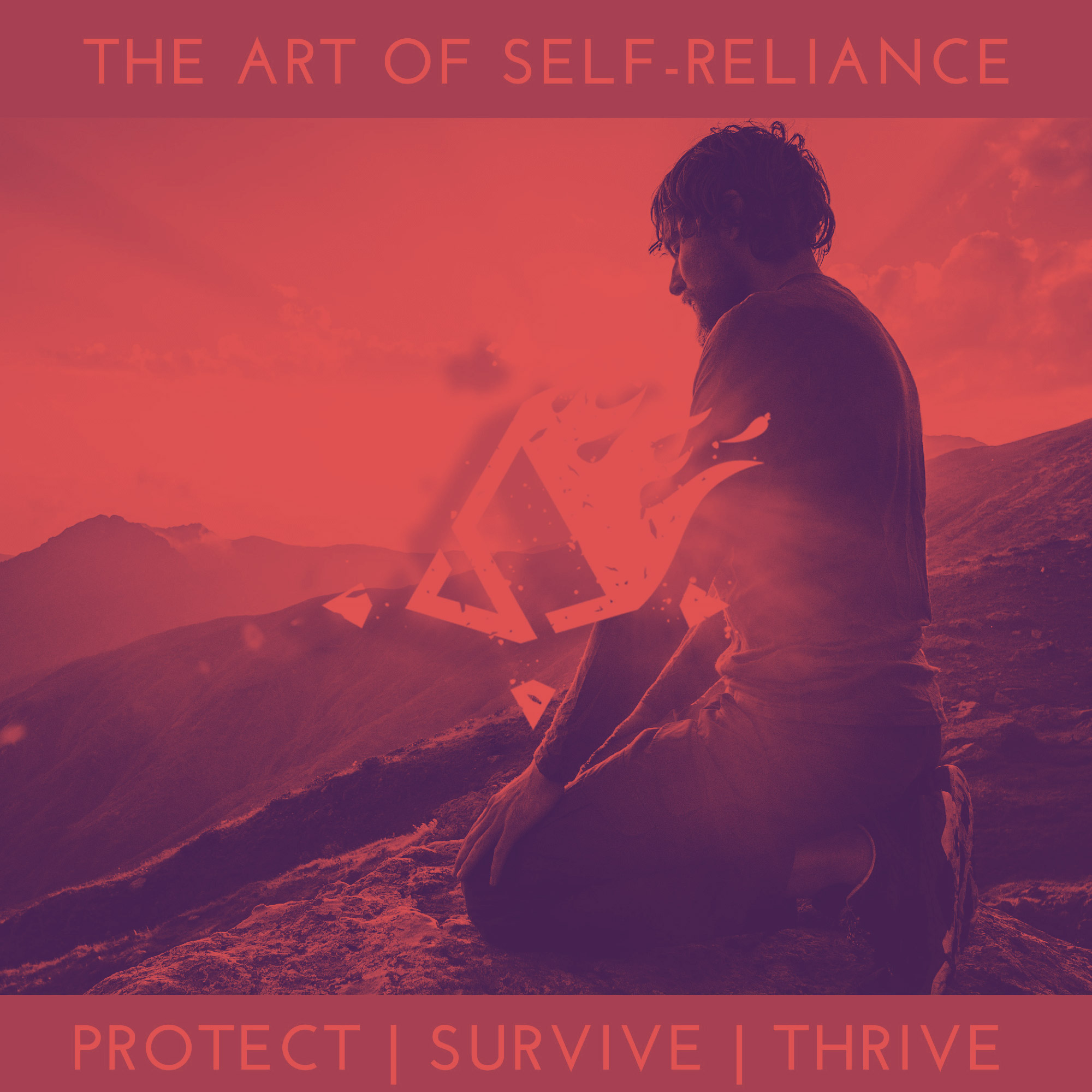 Show artwork for The Art of Self Reliance