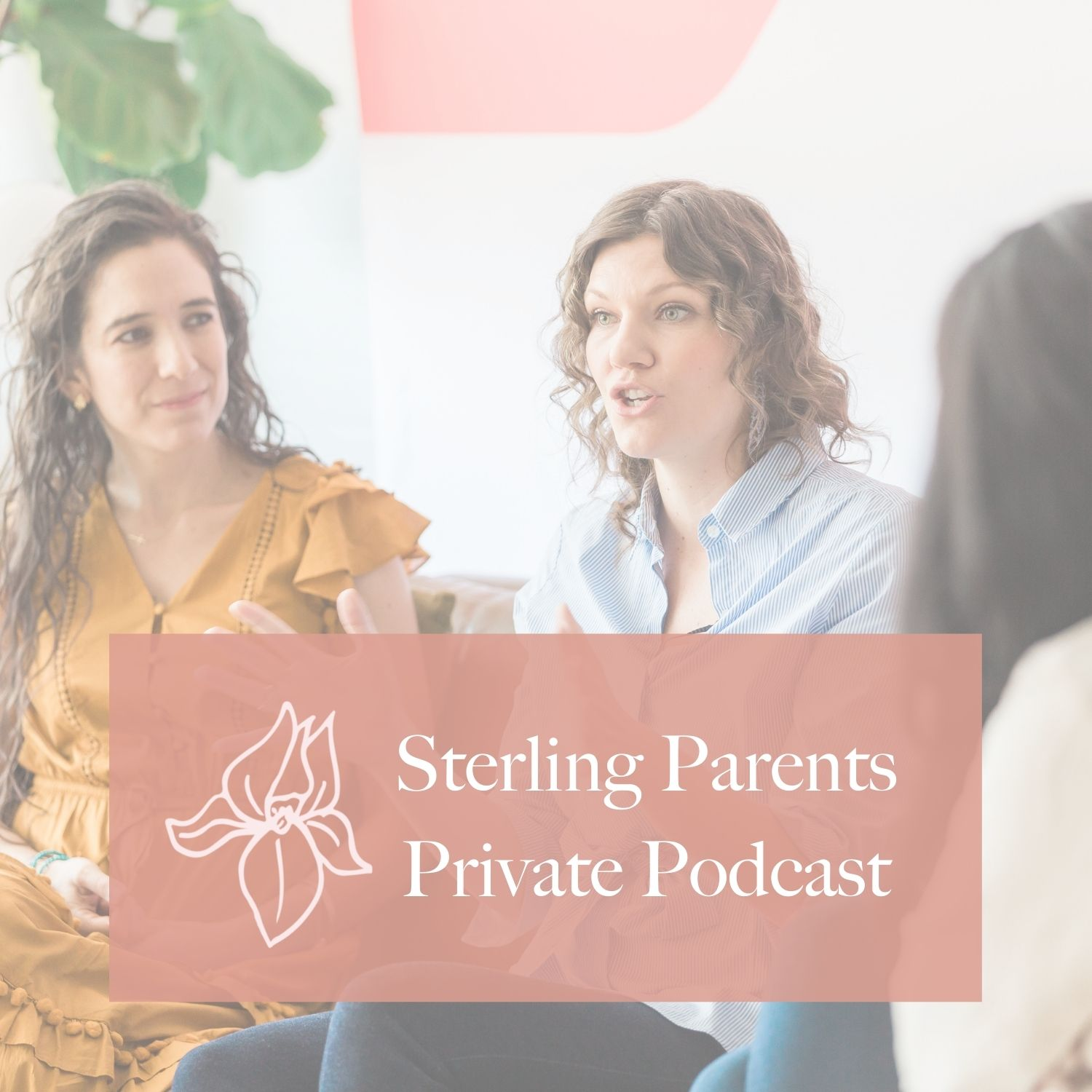 Artwork for podcast Sterling Parents Private Podcast