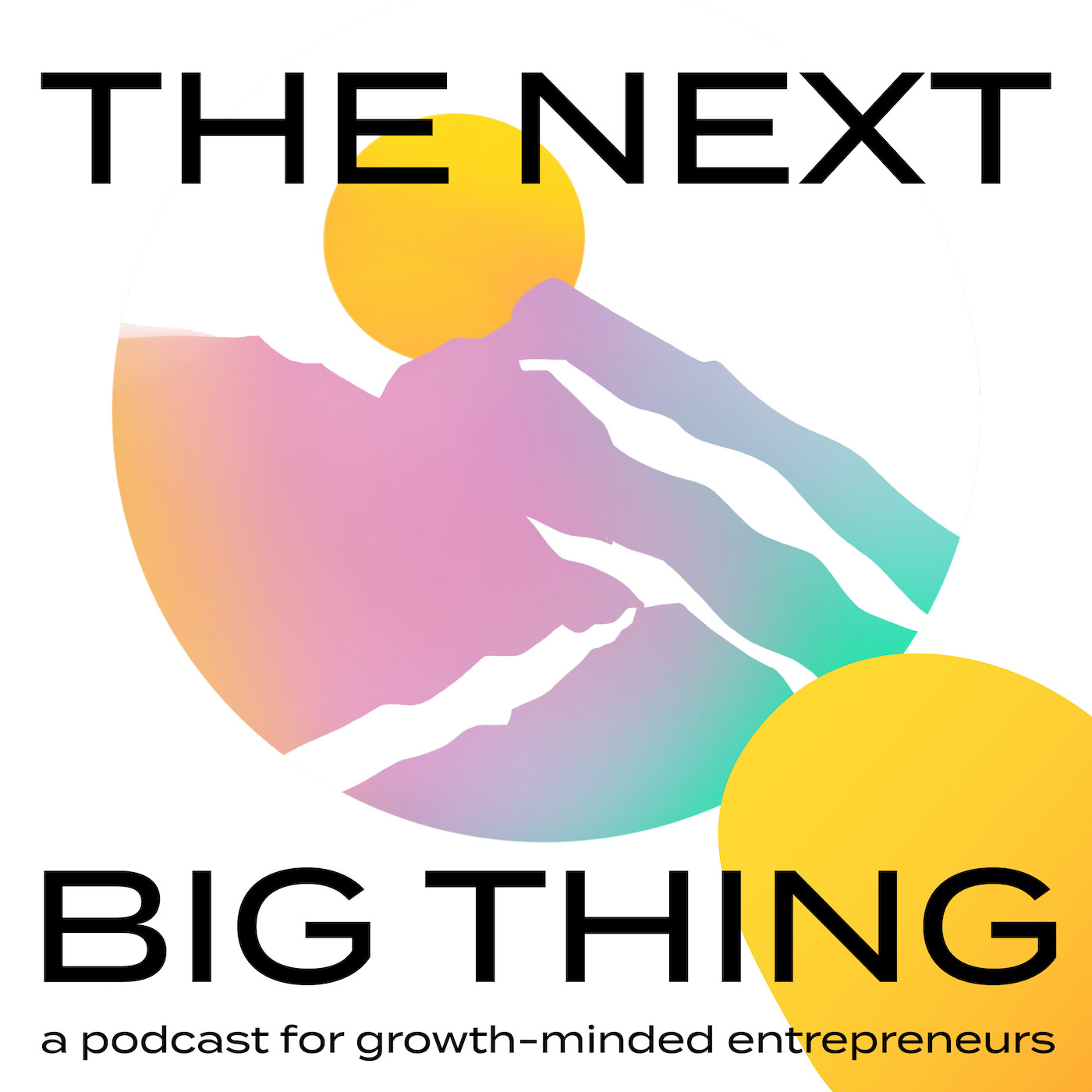 Show artwork for The Next Big Thing