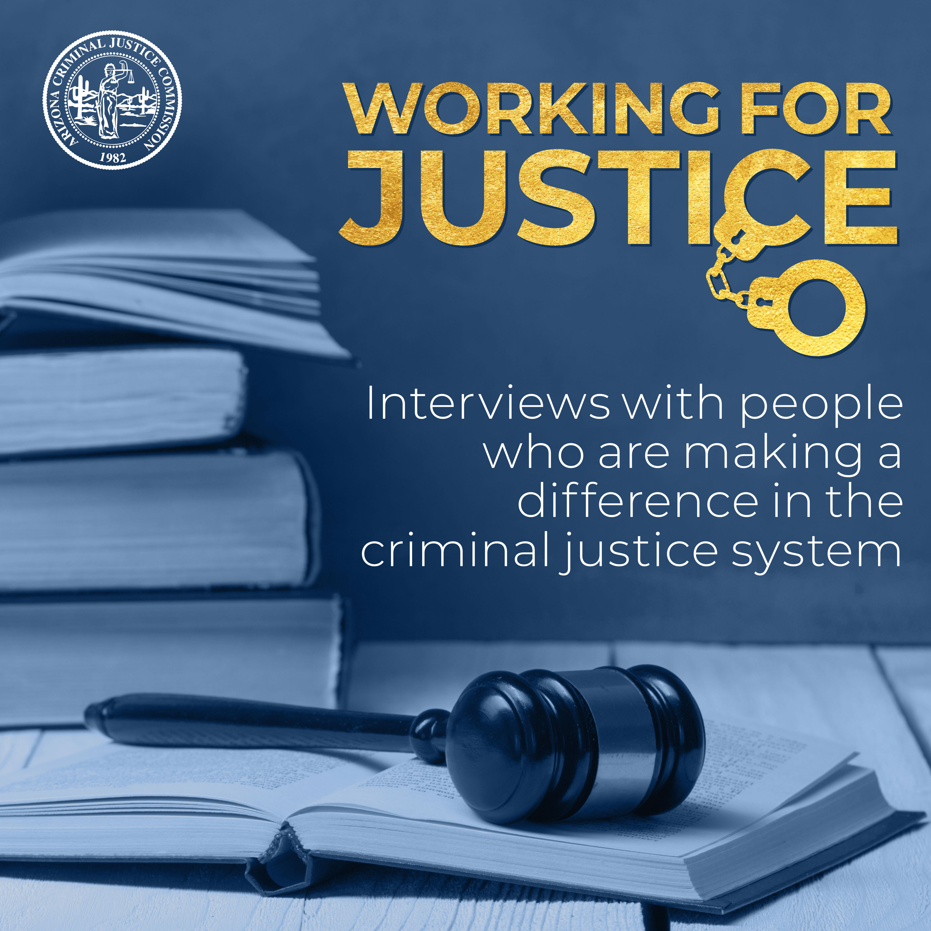 Artwork for podcast Working for Justice