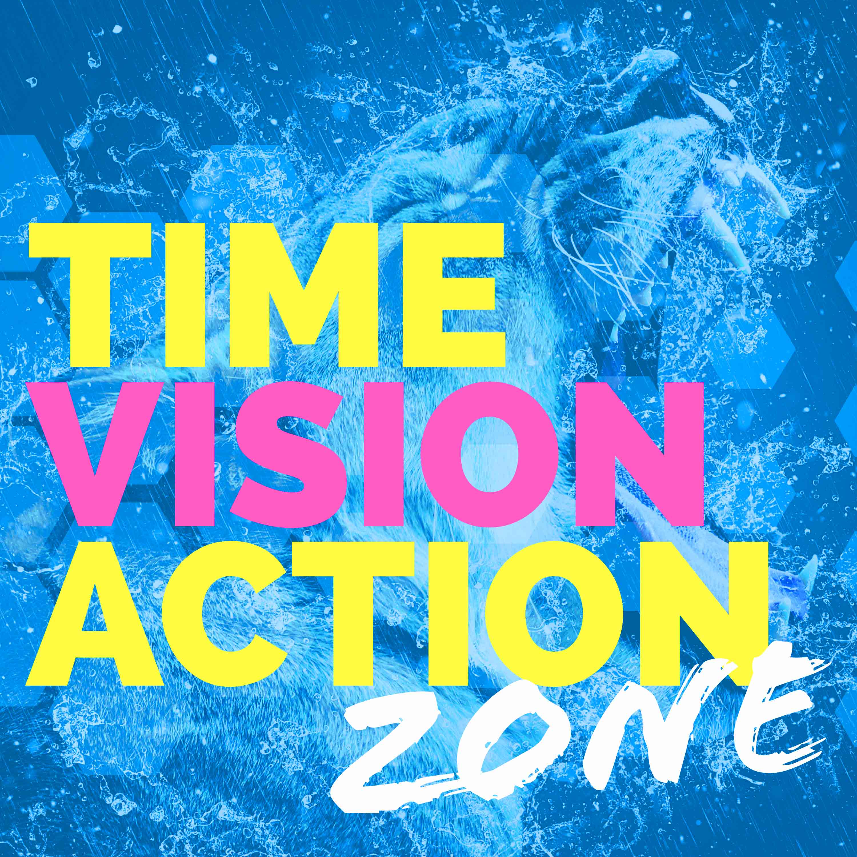 Artwork for podcast Time Vision Action Zone