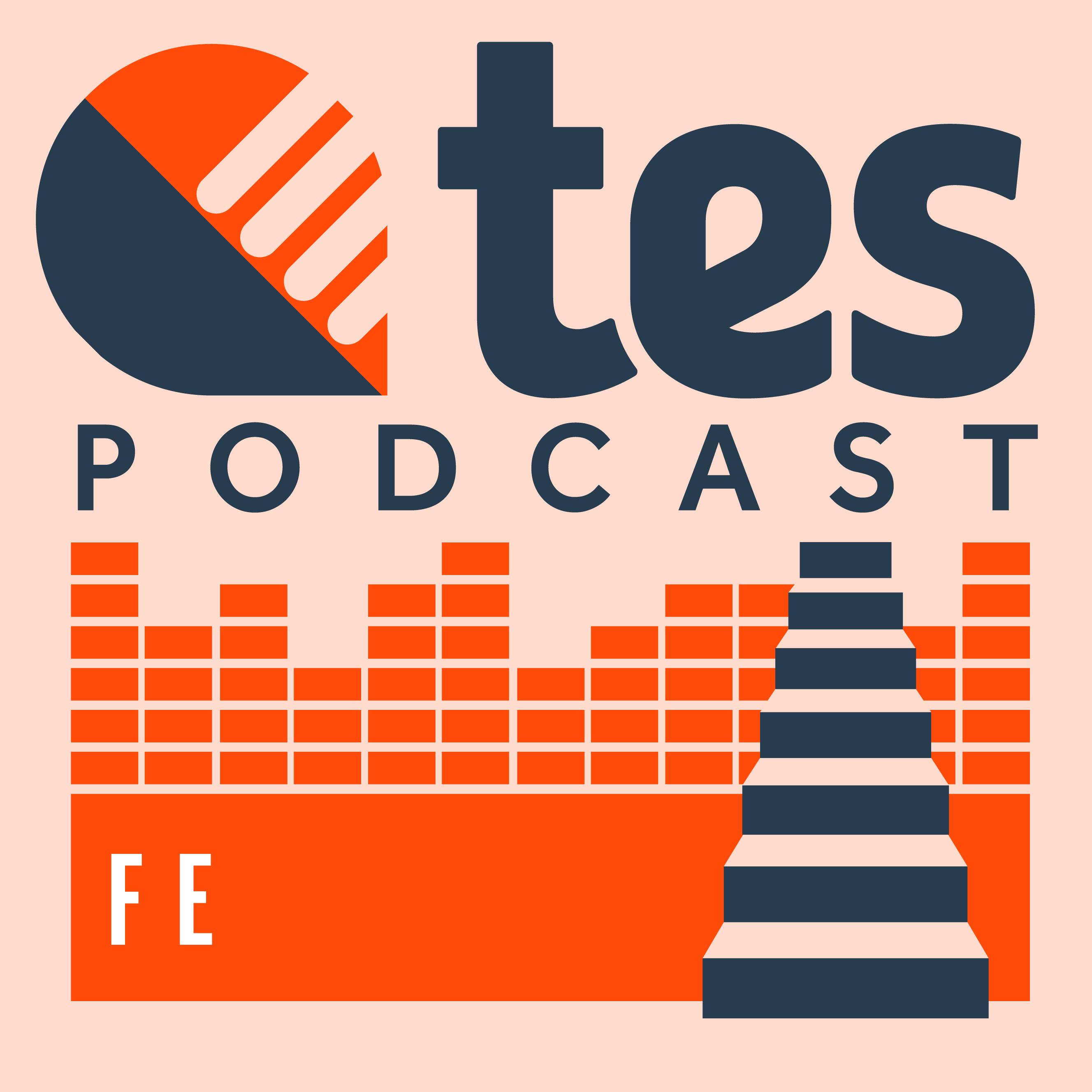Artwork for podcast Tes FE