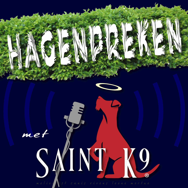 Artwork for podcast Hagenpreken