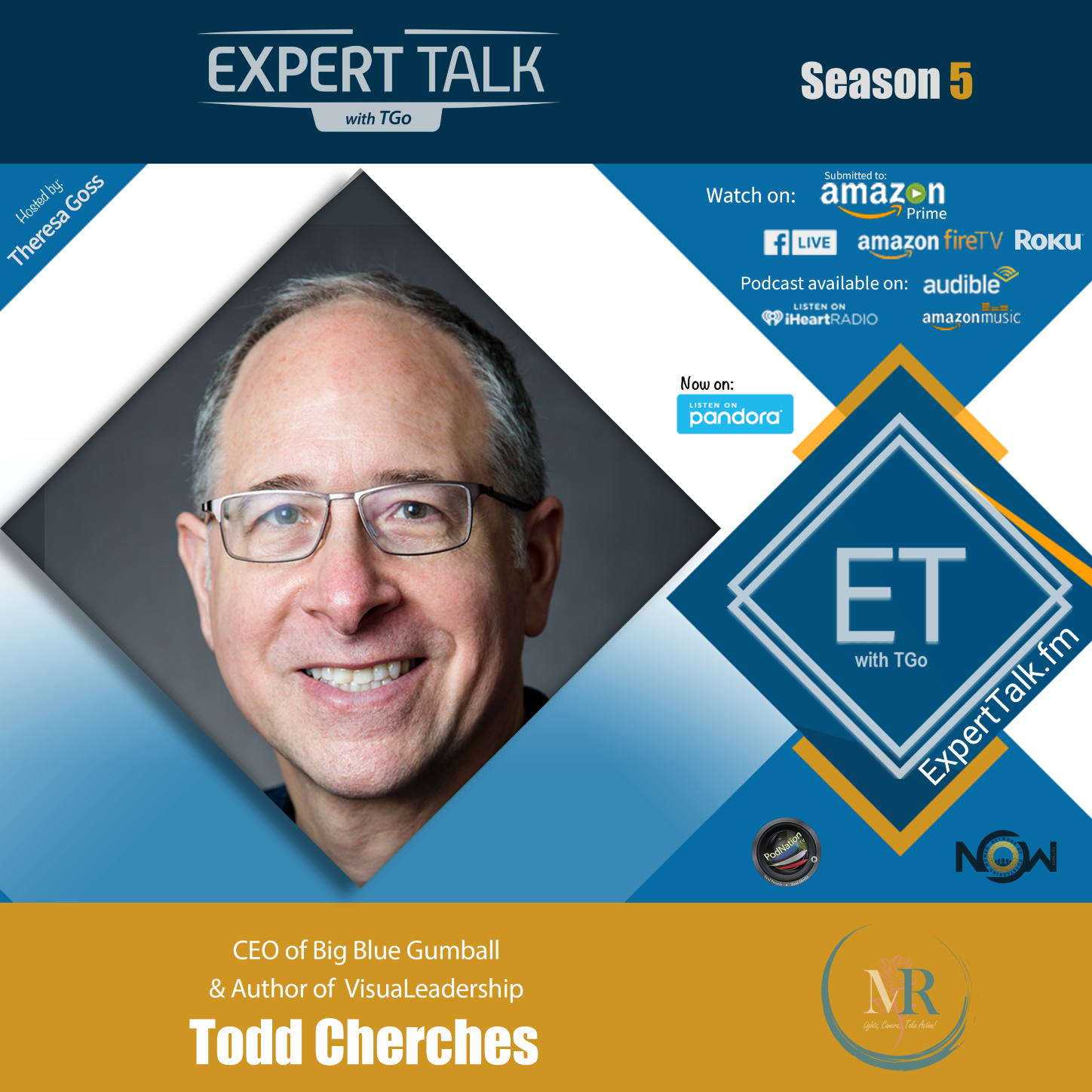Artwork for podcast Expert Talk with TGo