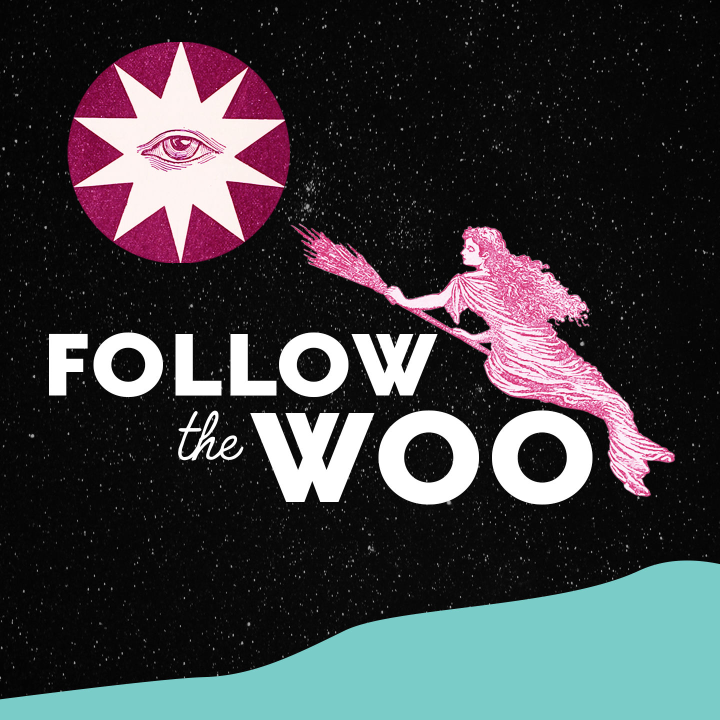 Show artwork for Follow the Woo