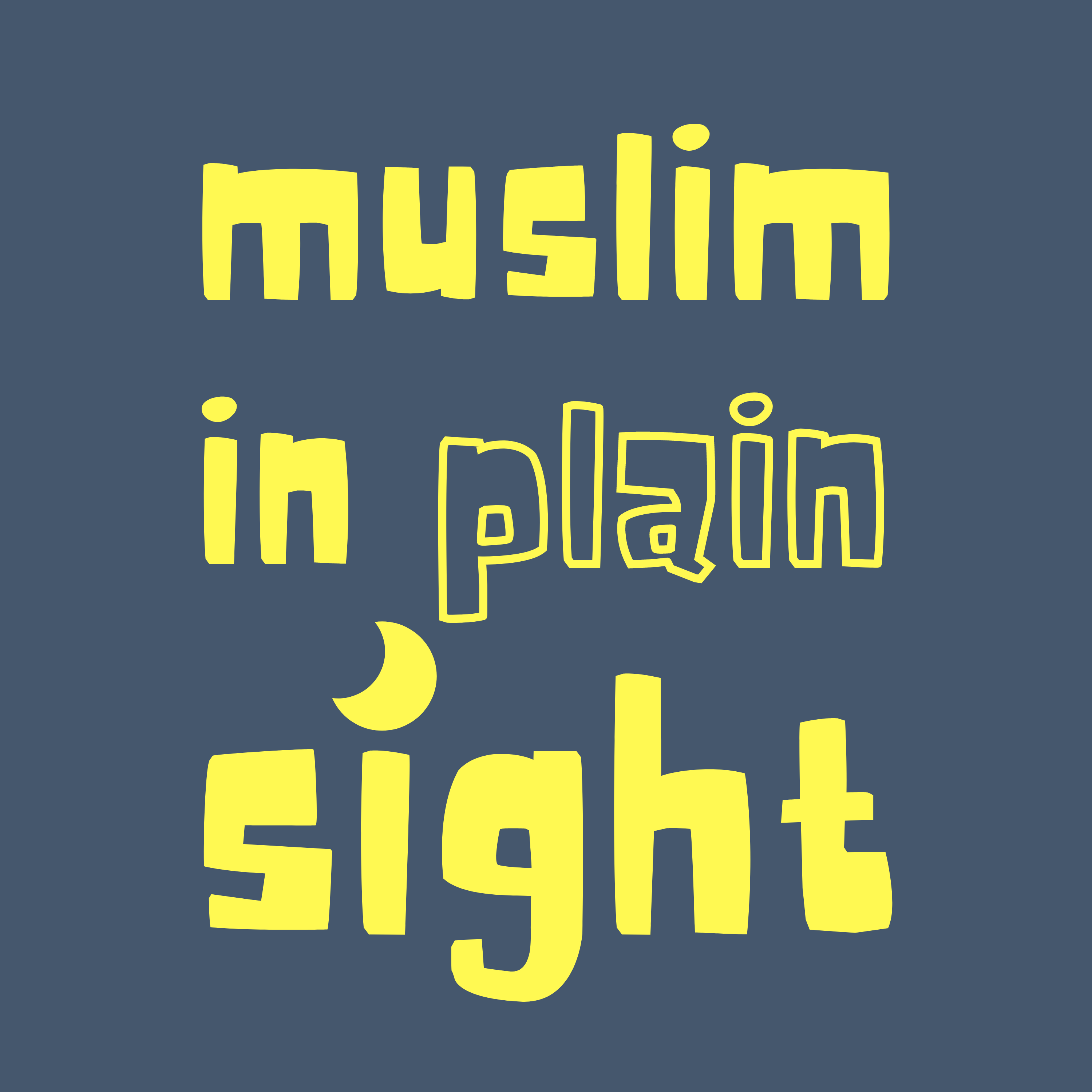 Show artwork for Muslim in Plain Sight