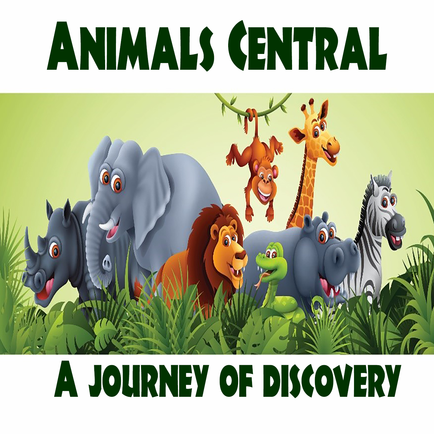 Show artwork for Animals Central