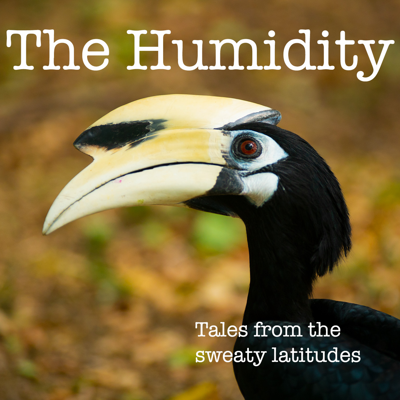 Show artwork for The Humidity