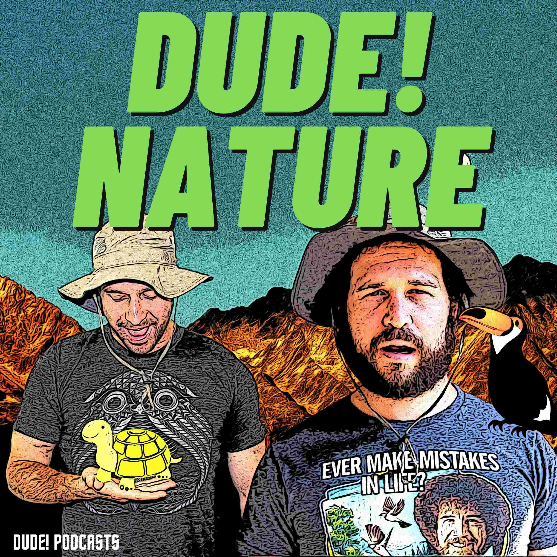 Show artwork for Dude! Nature