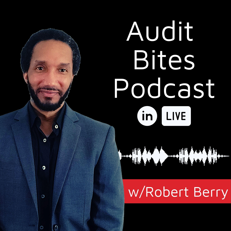 Artwork for podcast Audit Bites