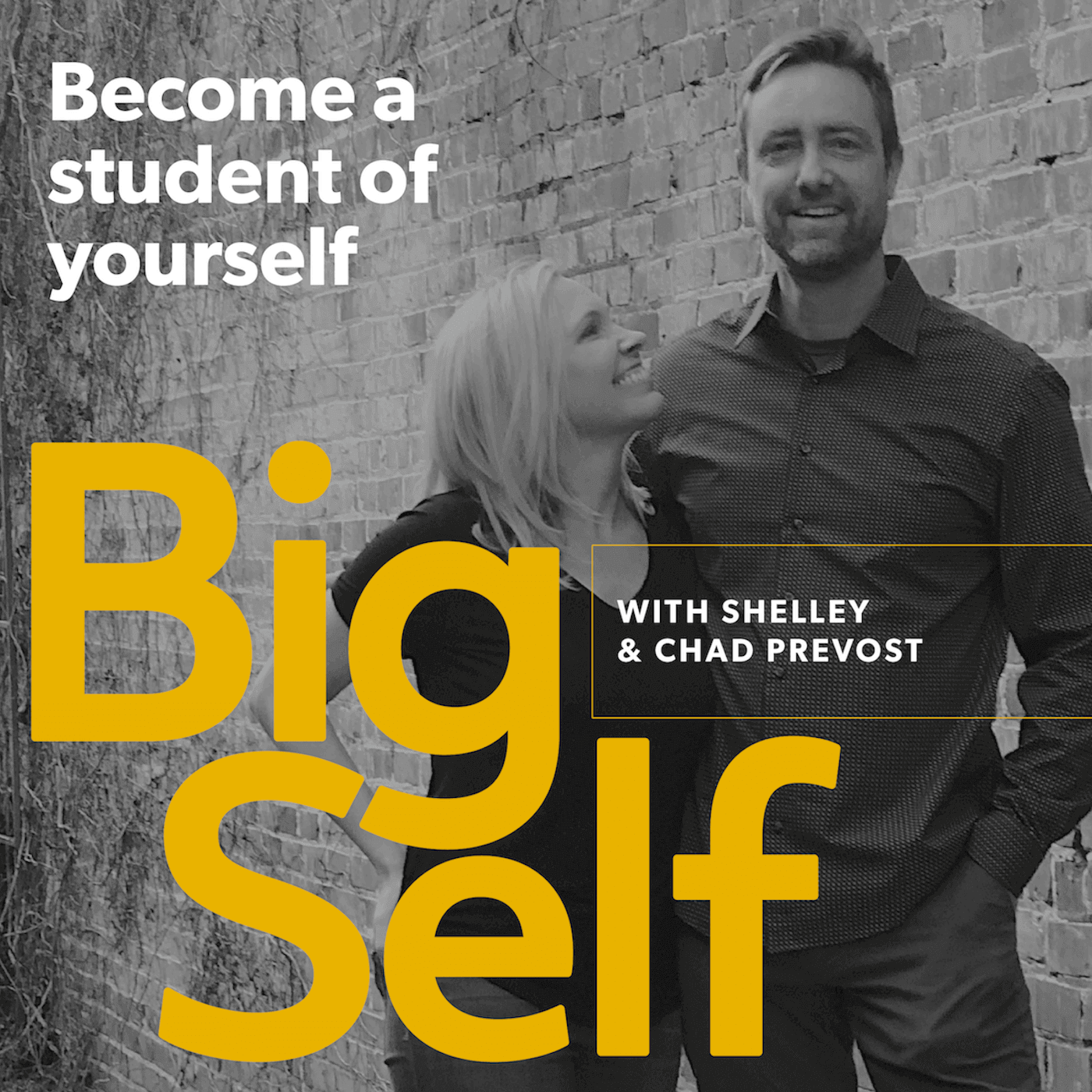 Show artwork for The Big Self Podcast